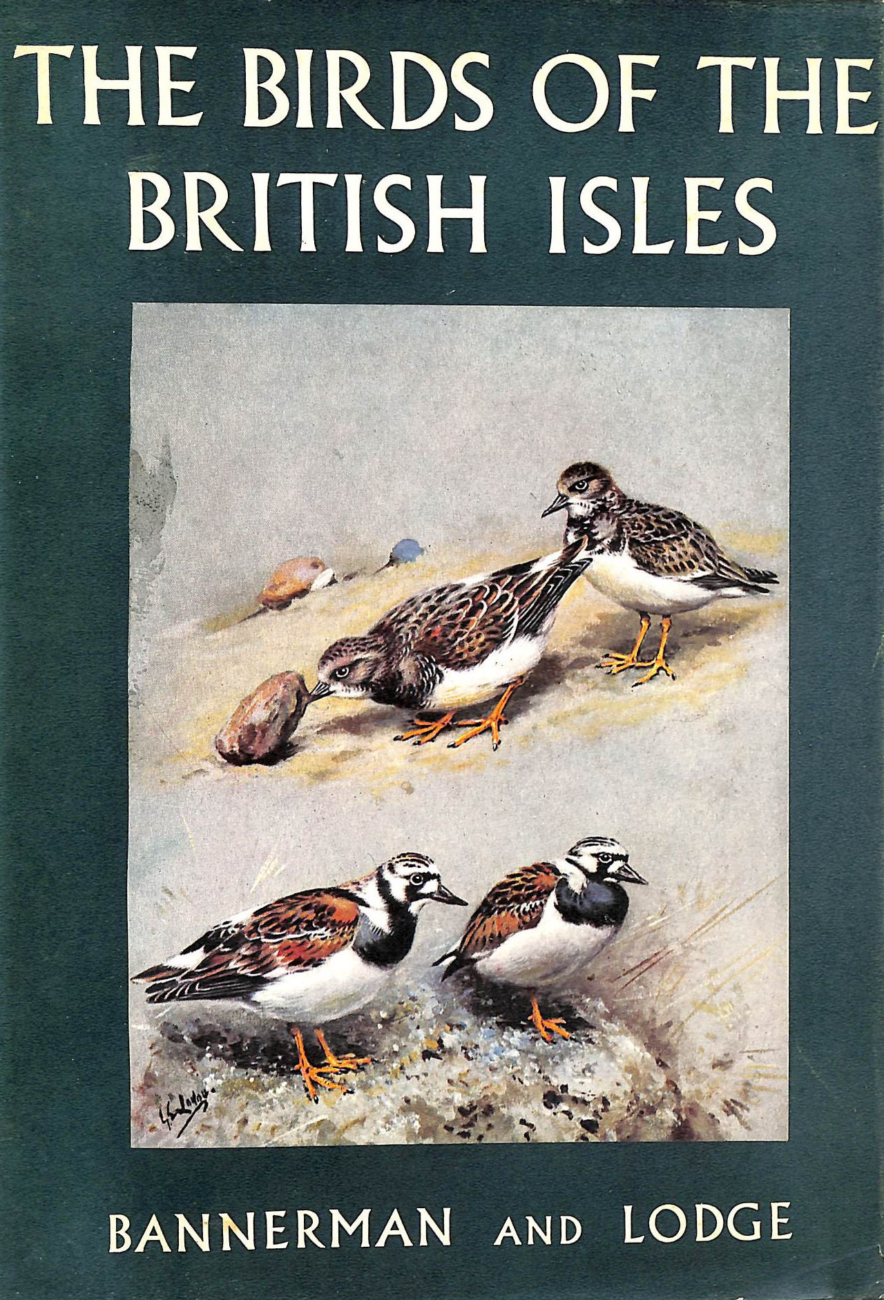Image for The Birds Of The British Isles: Volume Ix (9)