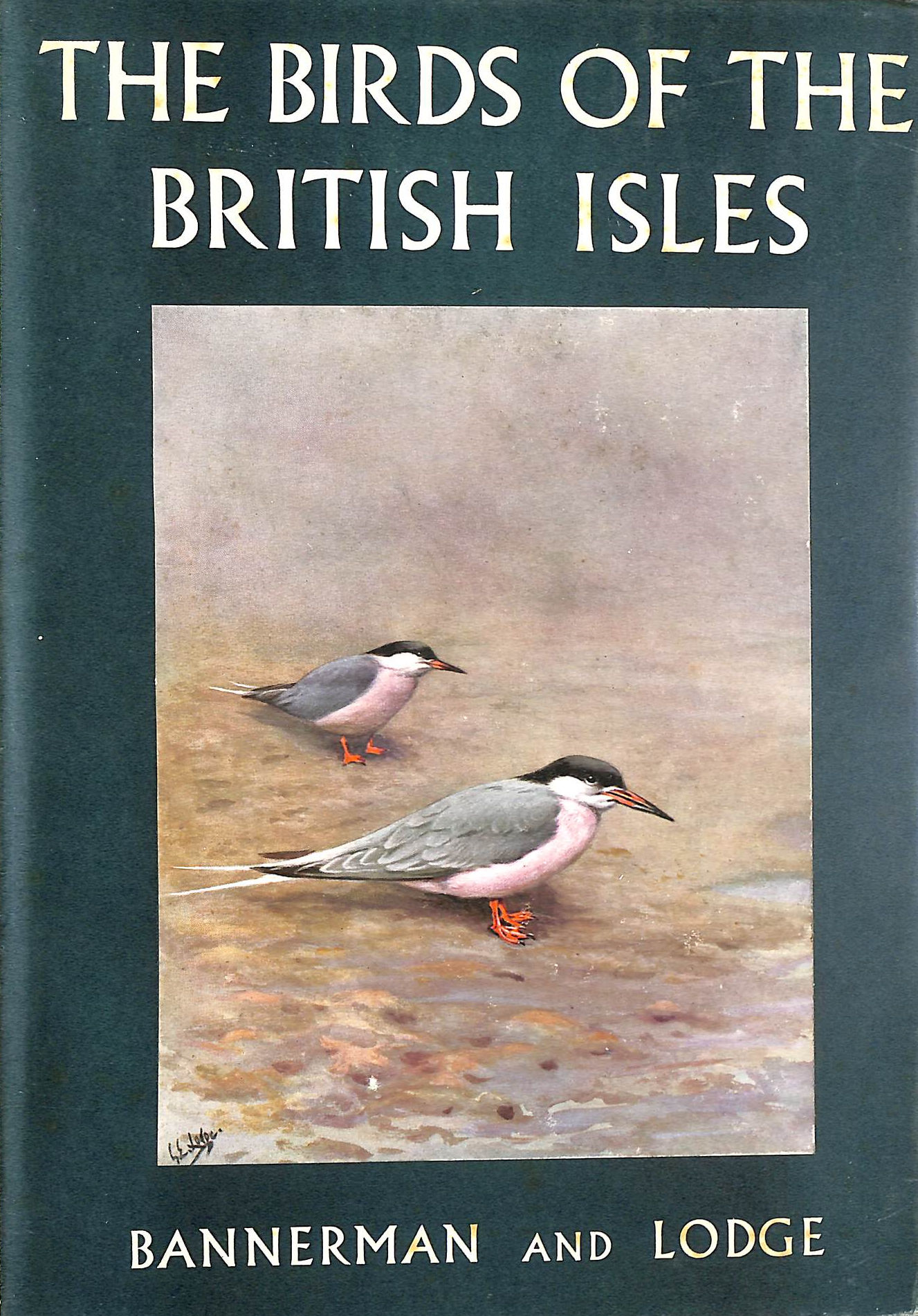 Image for The Birds Of The British Isles. Illustrated By George E. Lodge. Volume Eleven (Only).