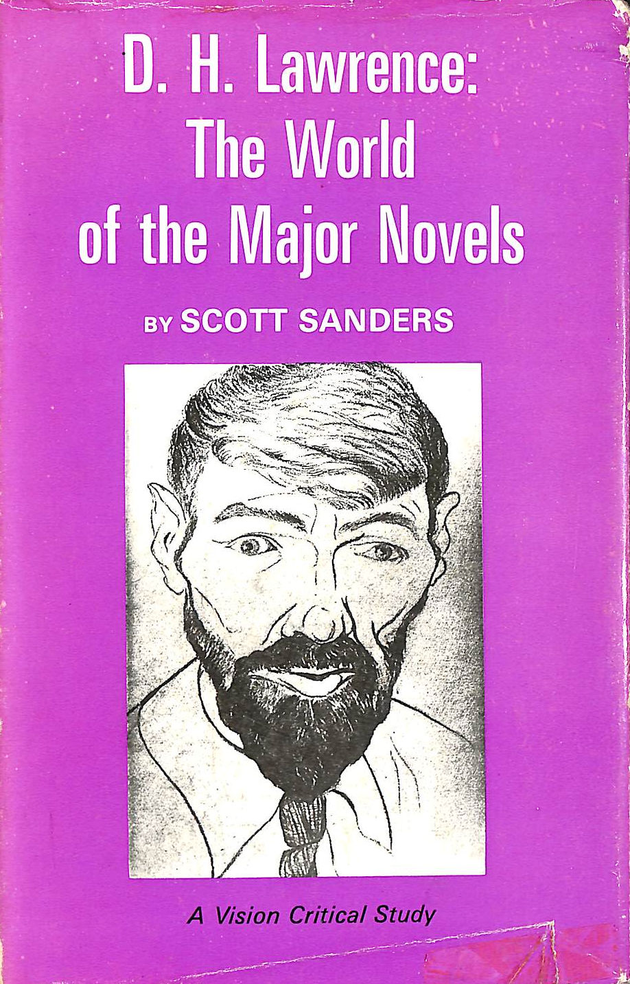 Image for D.H. Lawrence: The World Of The Major Novels (Vision Critical Studies)