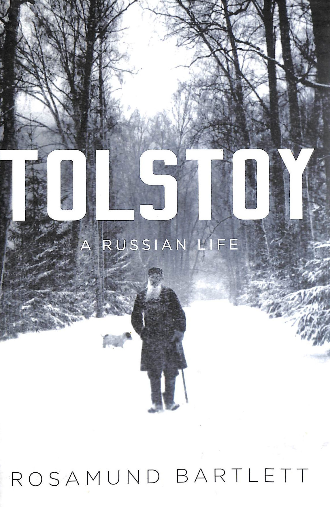 Image for Tolstoy: A Russian Life