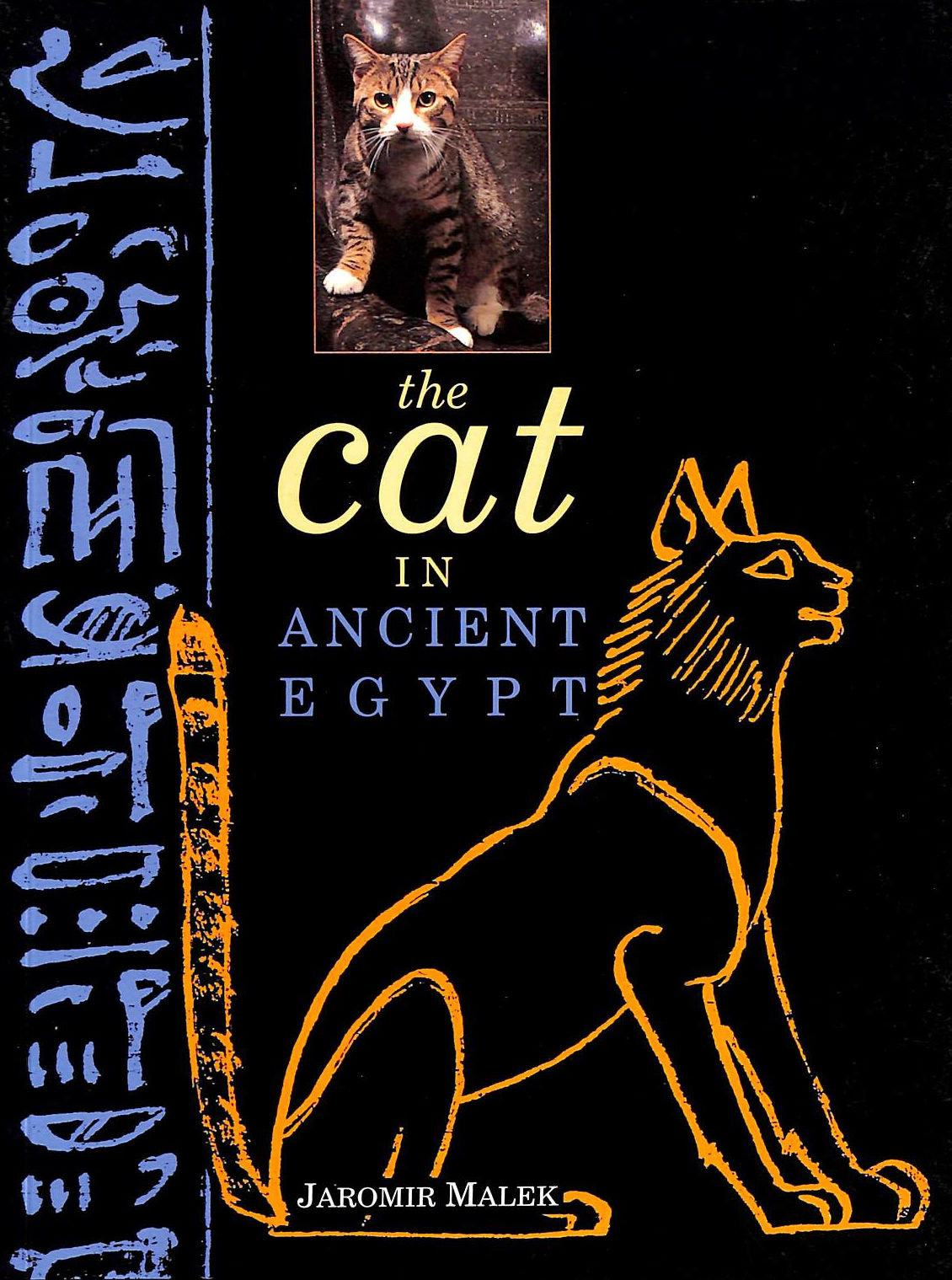 Image for The Cat In Ancient Egypt