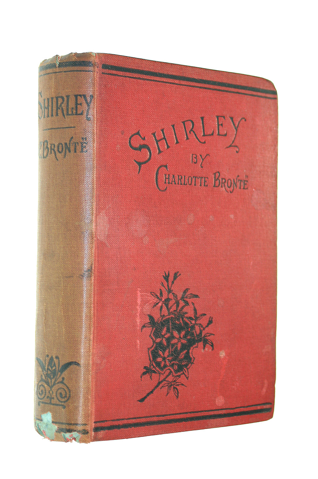 Image for Shirley: A Tale