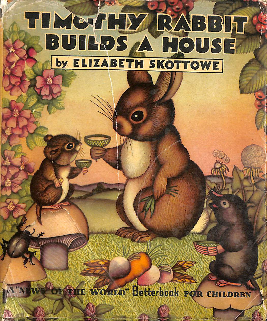 Image for Timothy Rabbit Builds A House