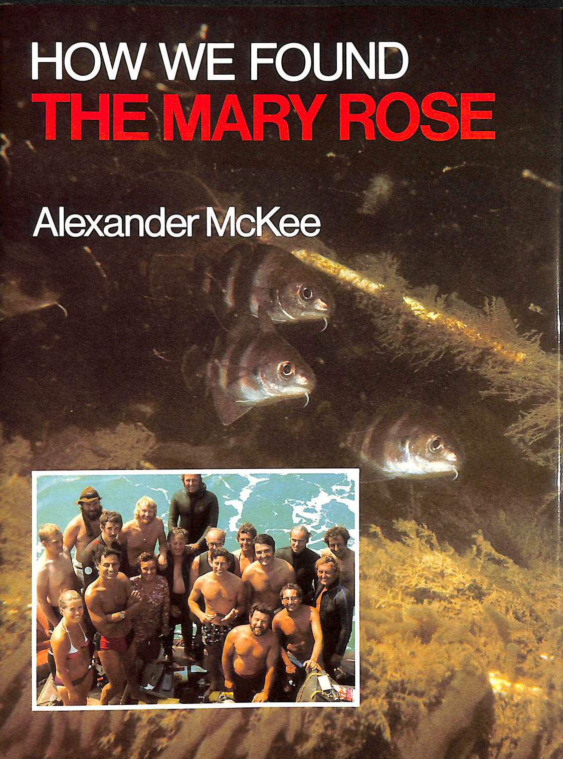 Image for How We Found The Mary Rose