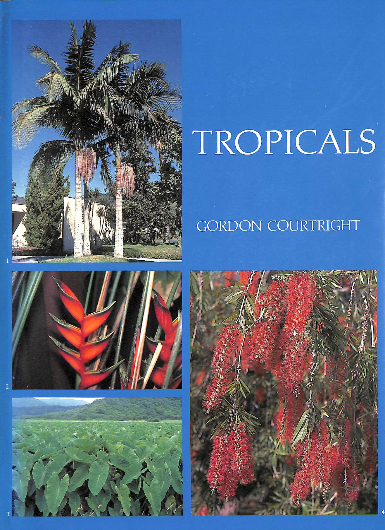 Image for Tropicals