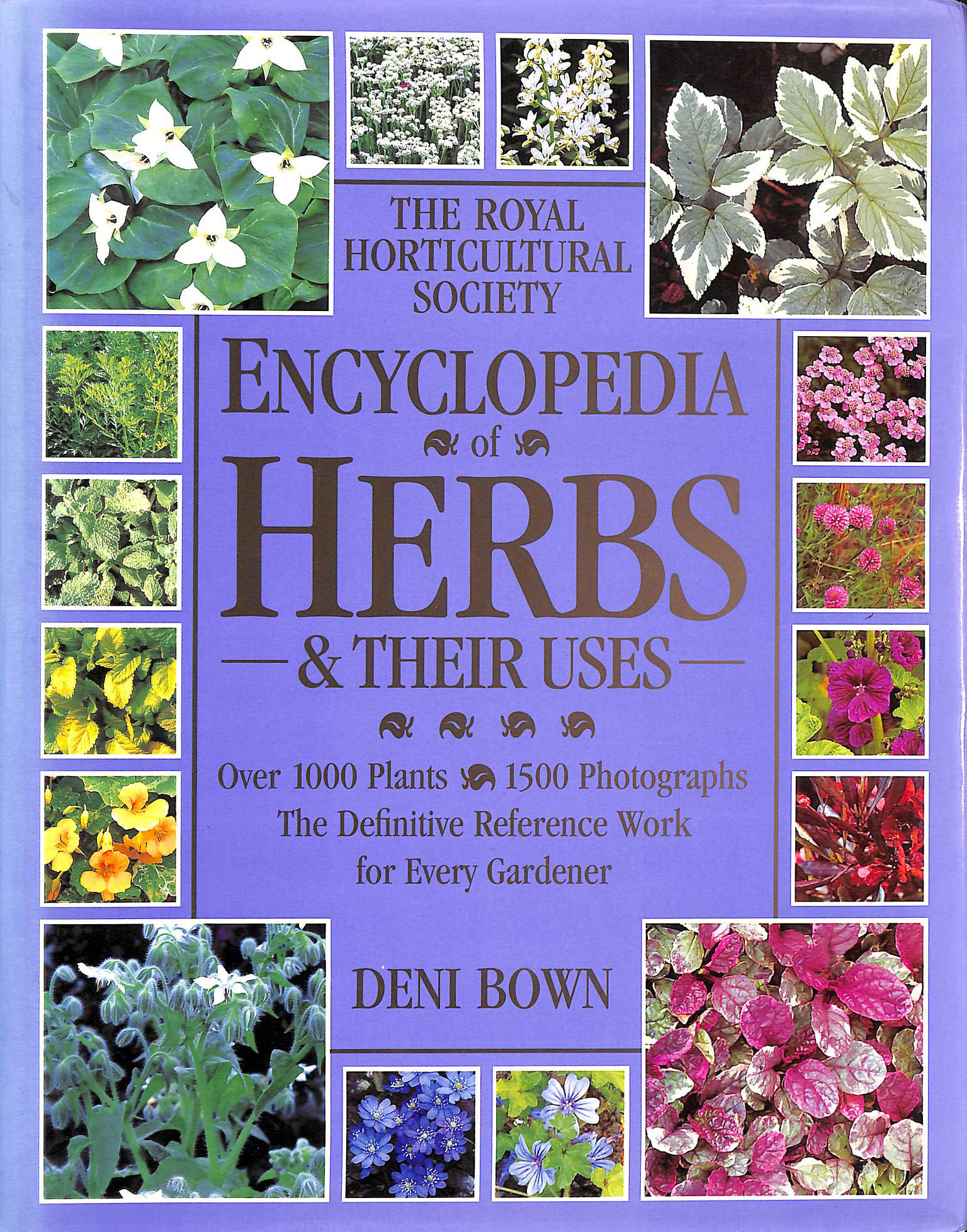 Image for RHS Encyclopedia Of Herbs & Their Uses