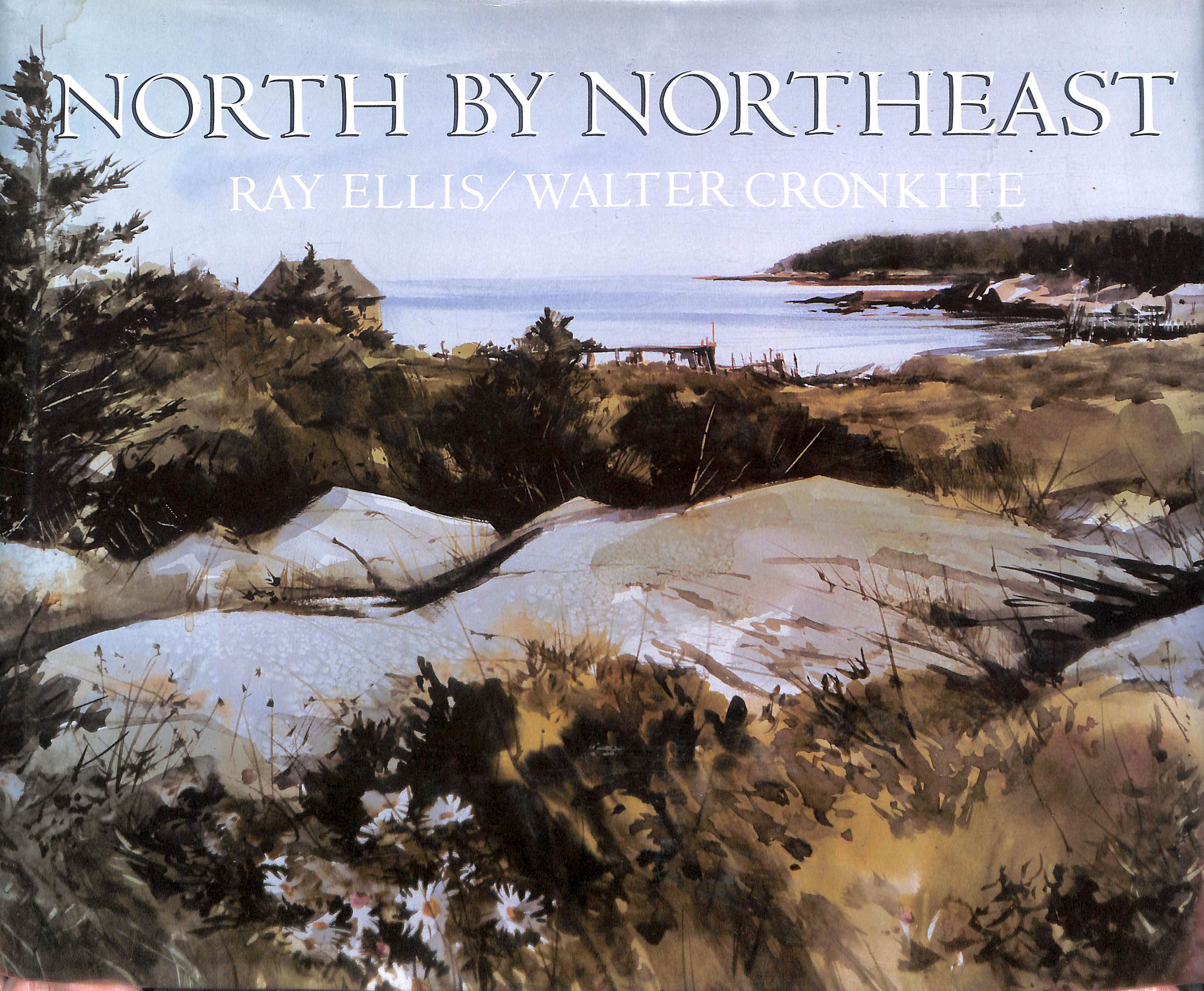 Image for North By North East