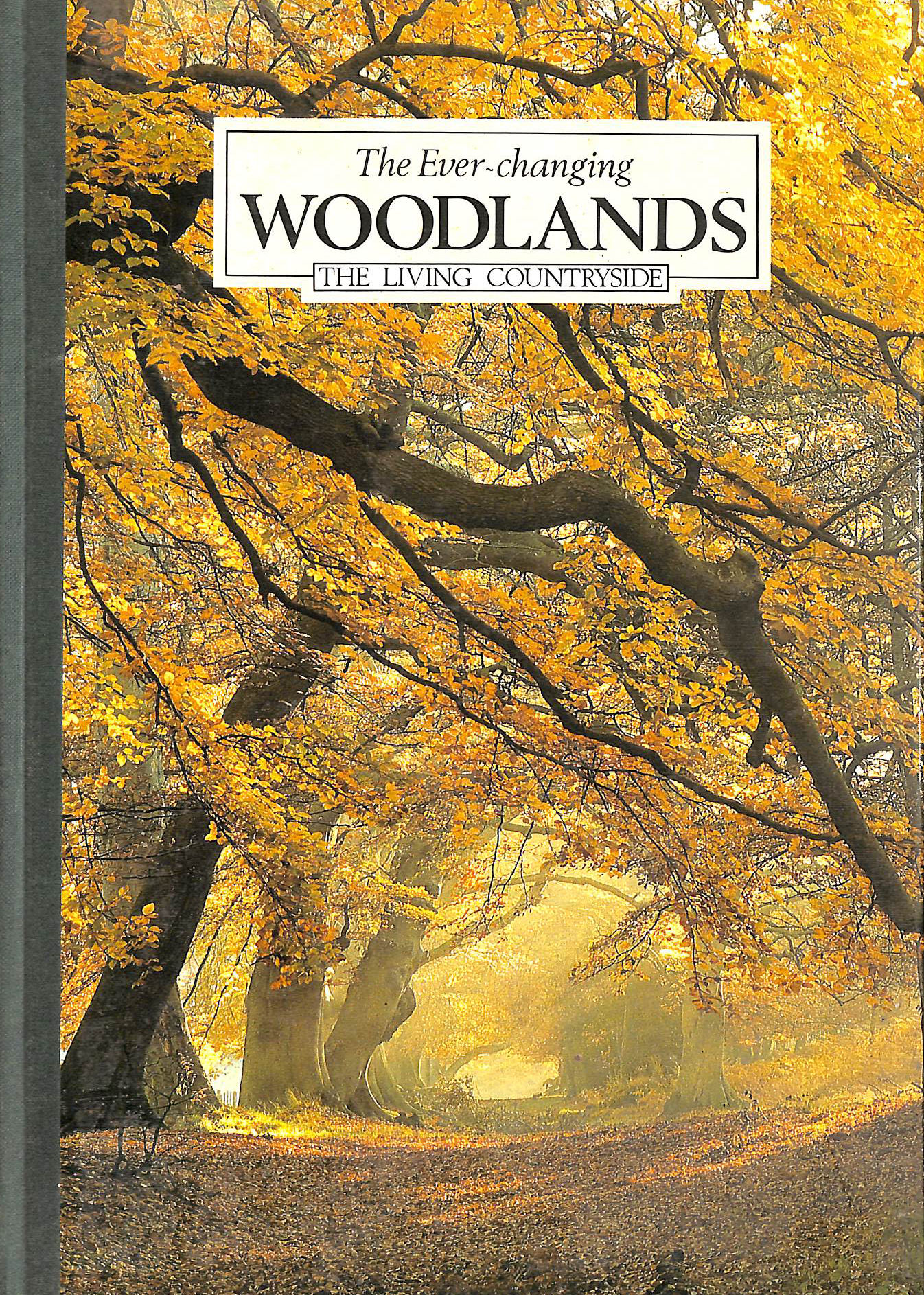 Image for The Ever-Changing Woodlands
