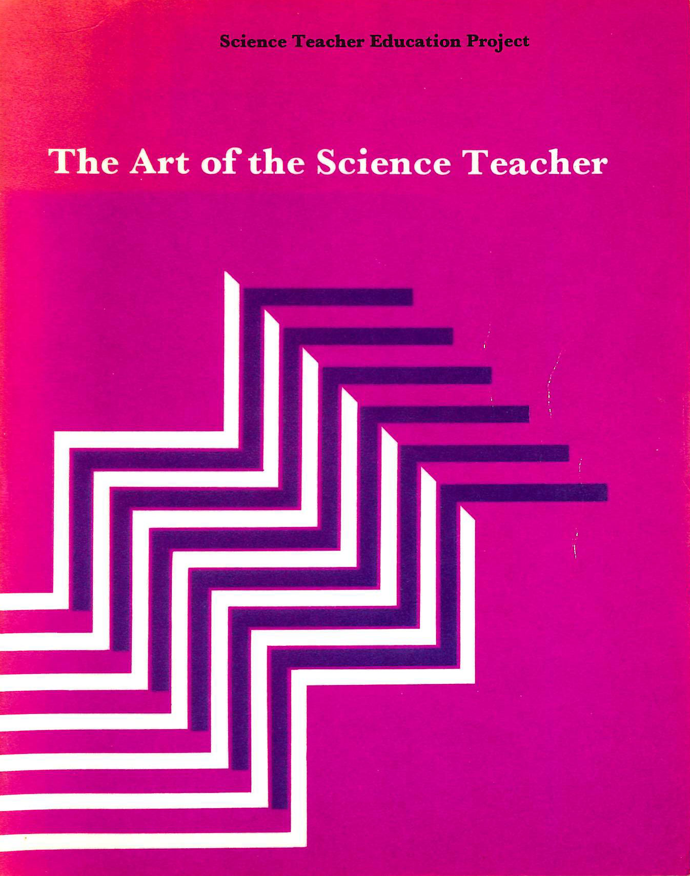 Image for The Art Of The Science Teacher (Science Teacher Education Project)