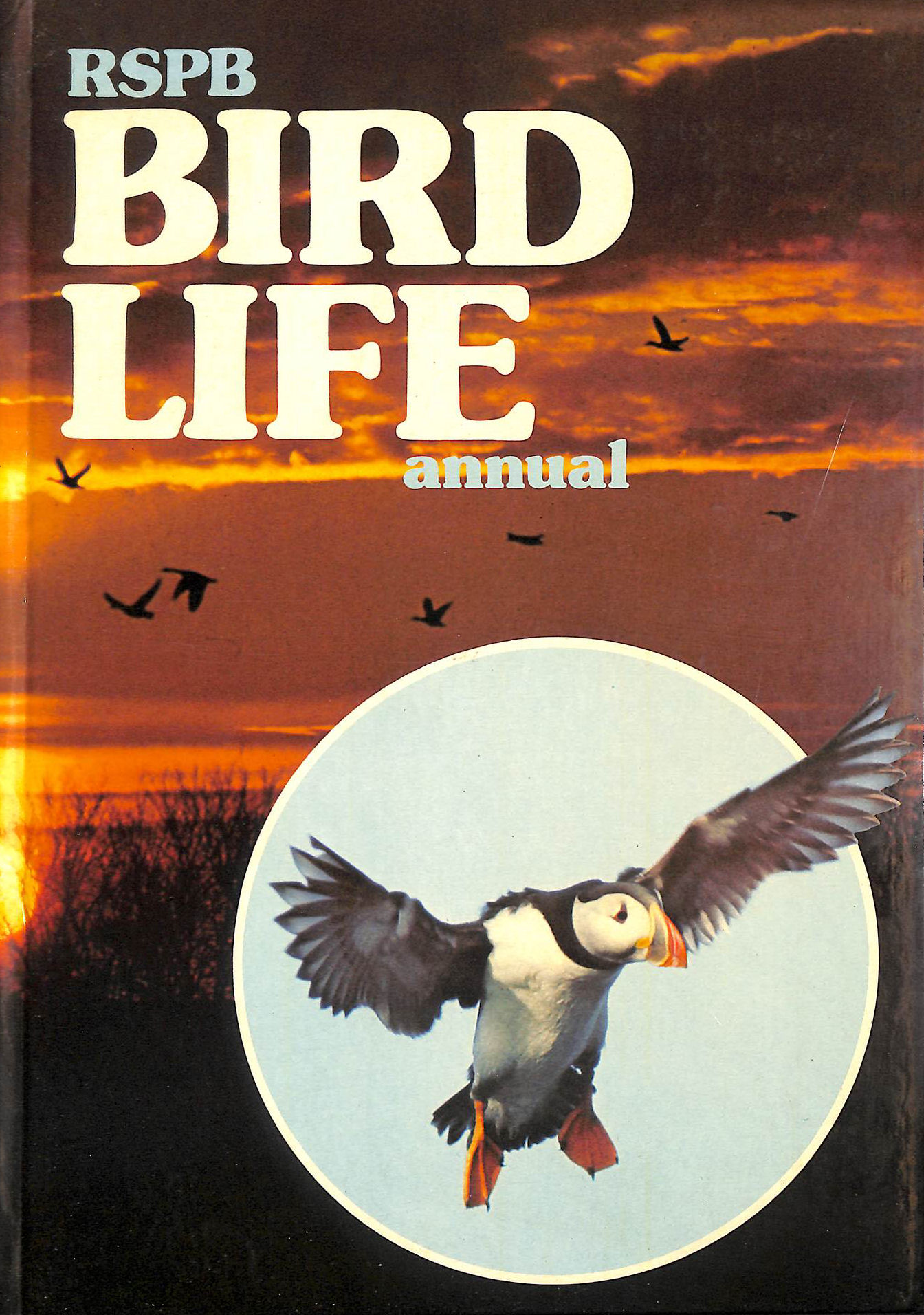 Image for Royal Society For The Protection Of Birds Bird Life Annual 1976