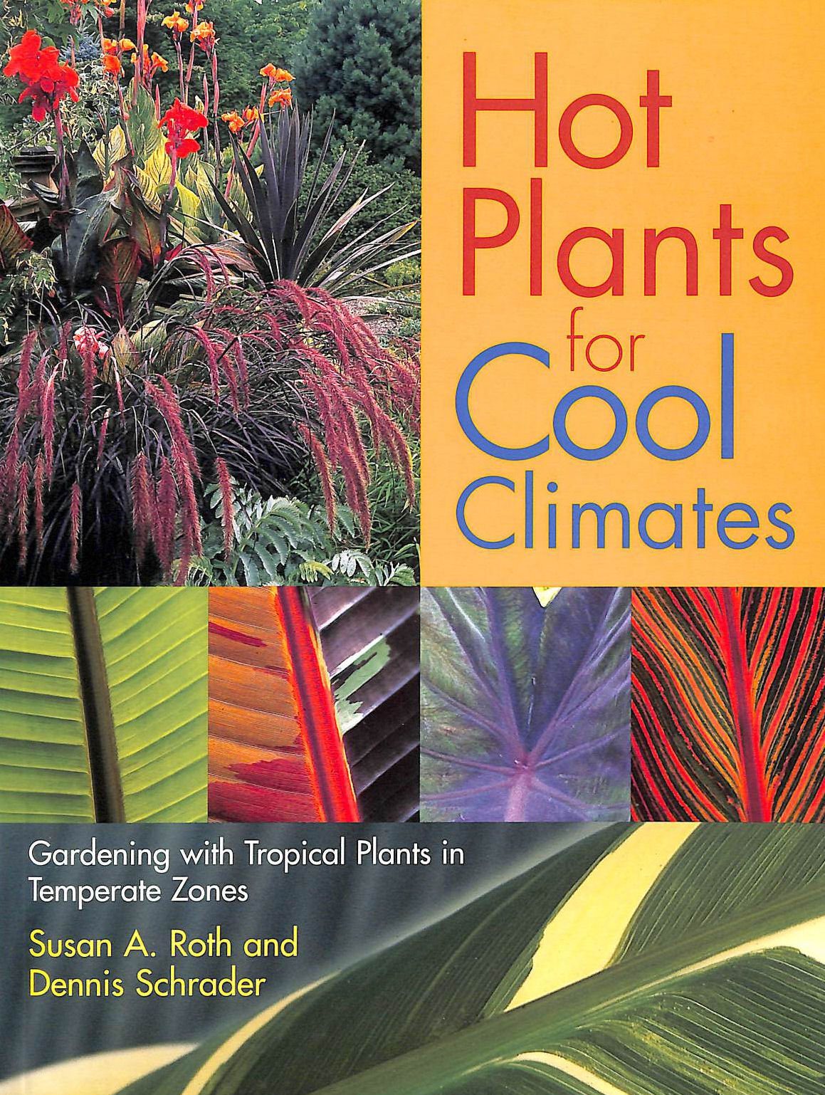 Image for Hot Plants For Cool Climates: Gardening With Tropical Plants In Temperate Zones