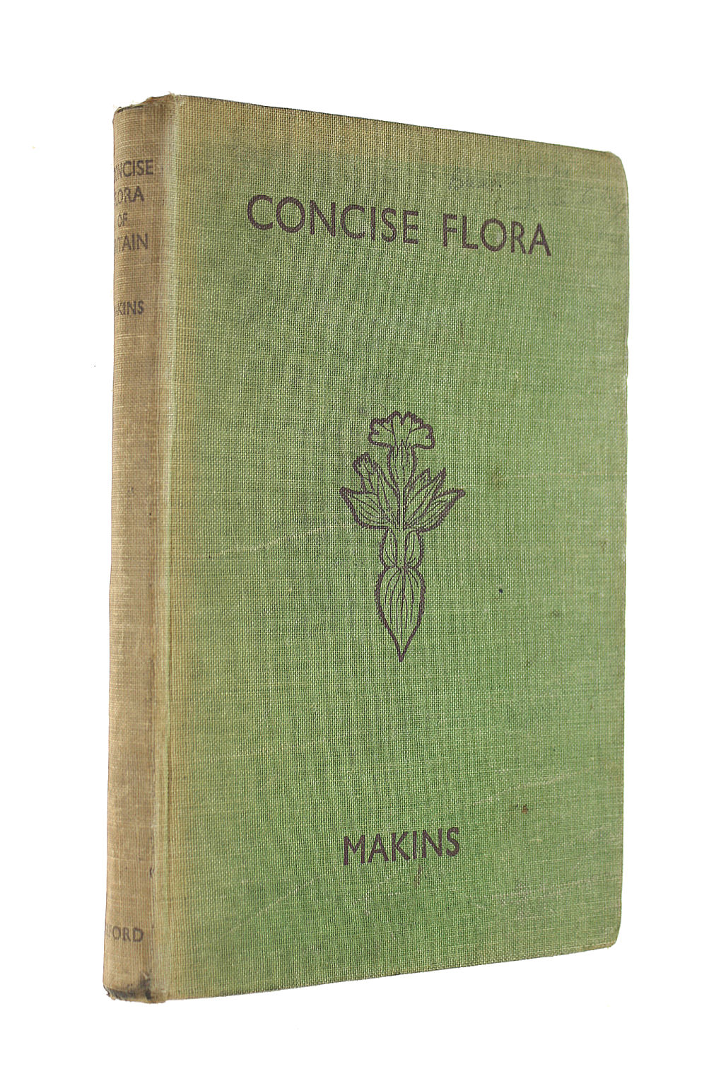 Image for Concise Flora Of Britain For The Use Of Schools.