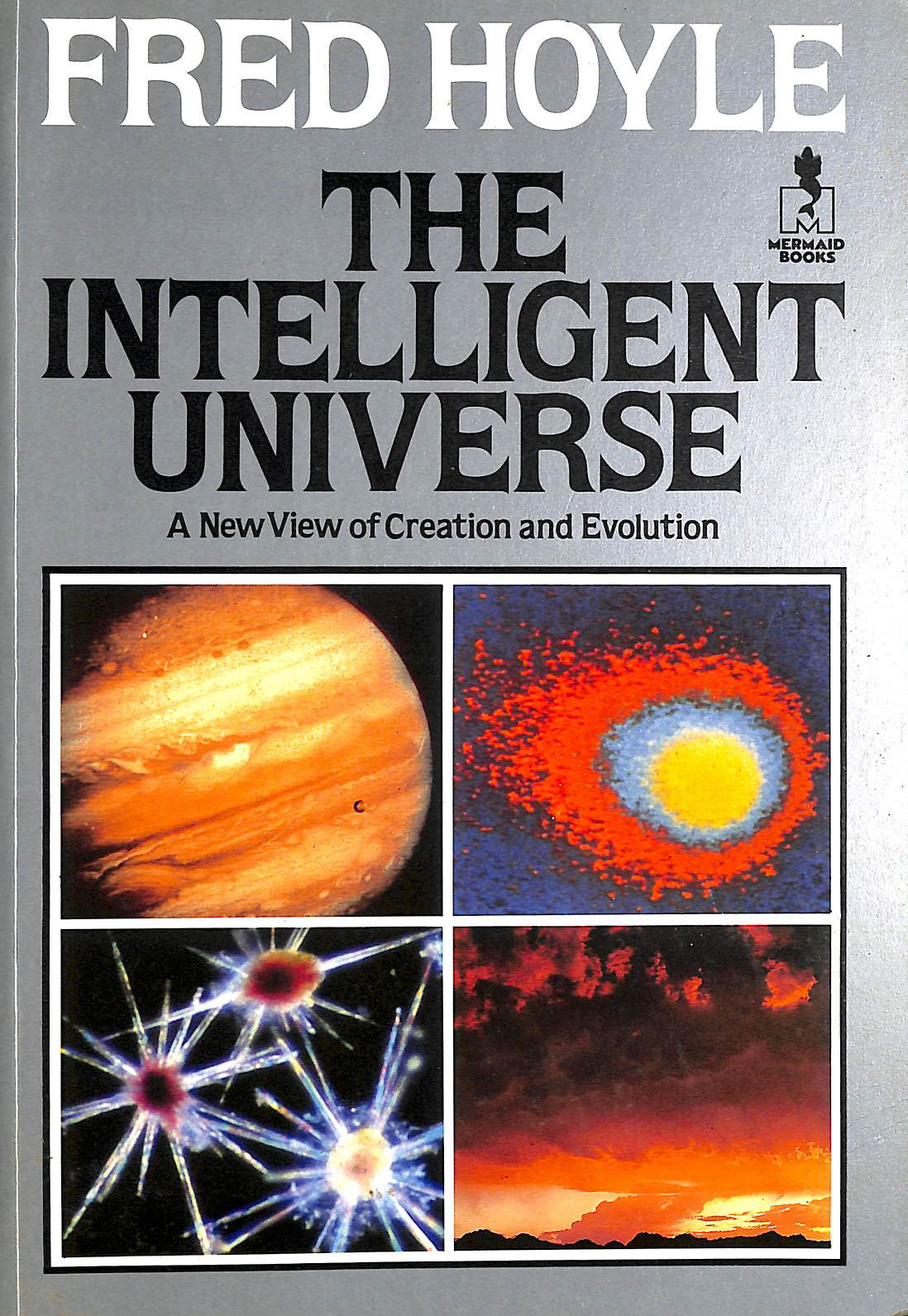 Image for Intelligent Universe: A New View Of Creation And Evolution (Mermaid Books)