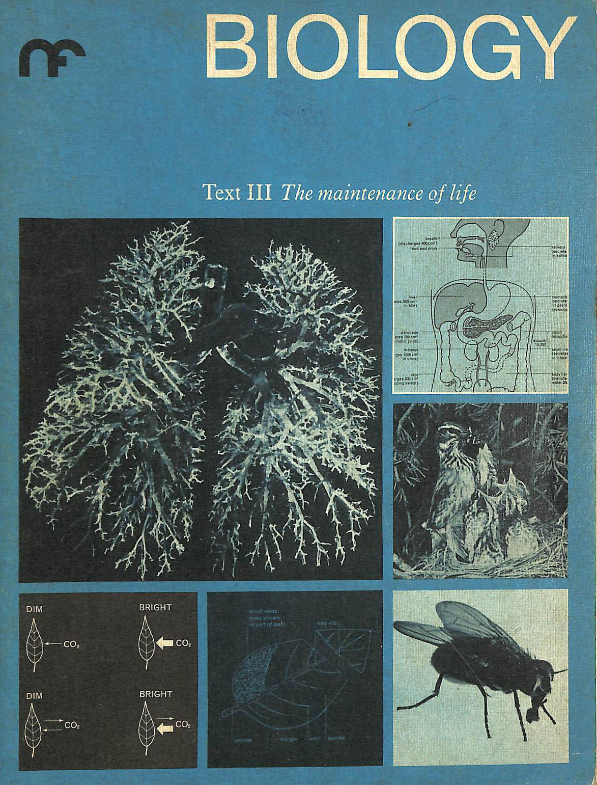 Image for Nuffield Biology: The Maintenance Of Life Text 3