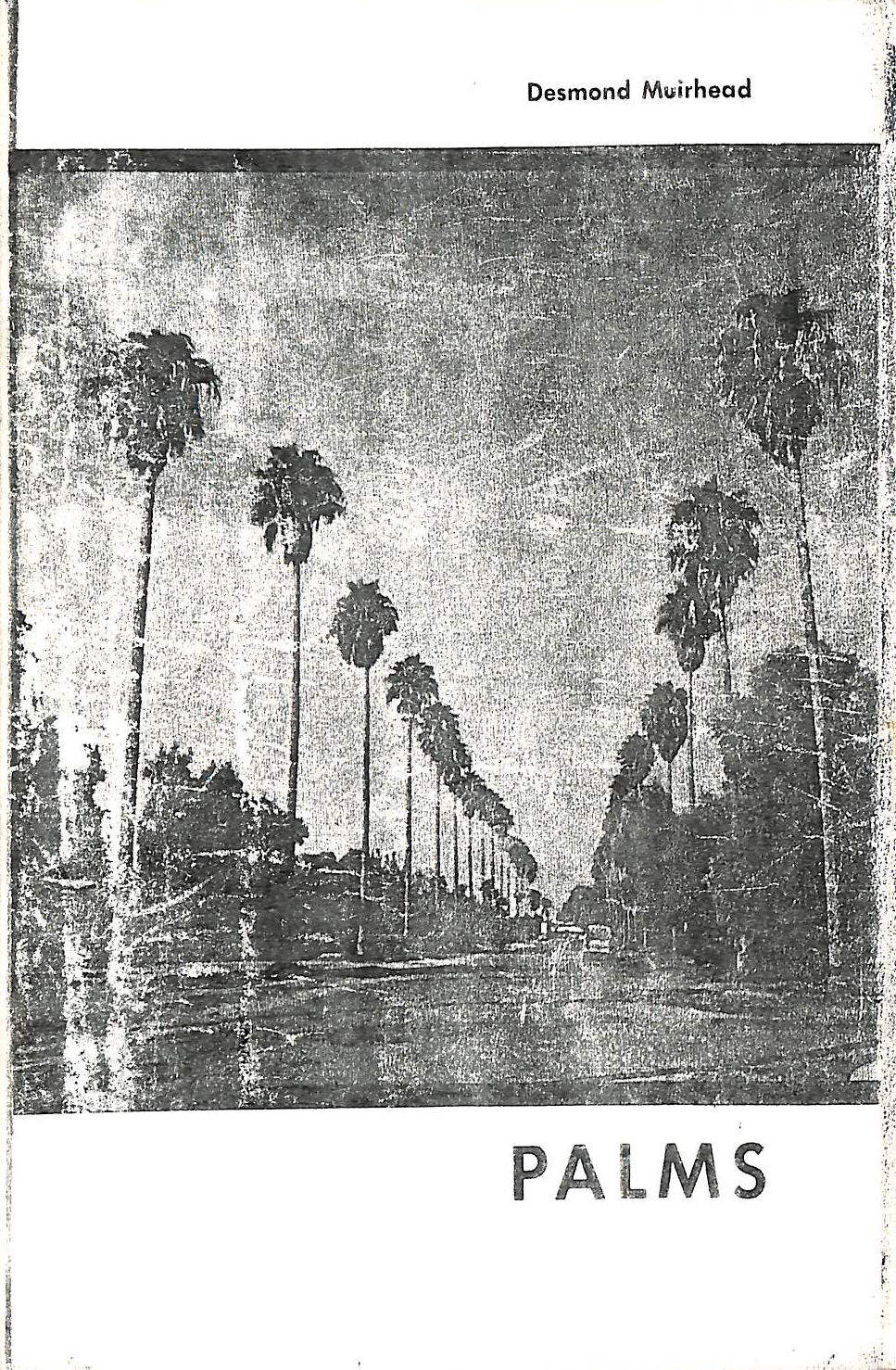 Image for Palms
