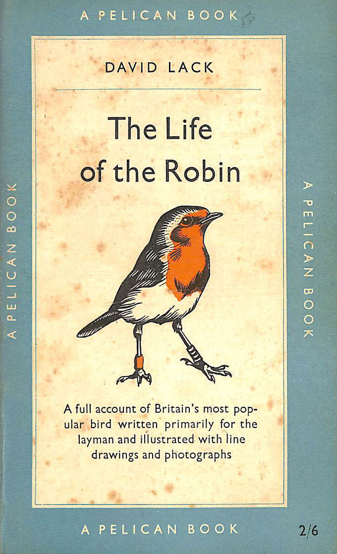 Image for The Life Of The Robin