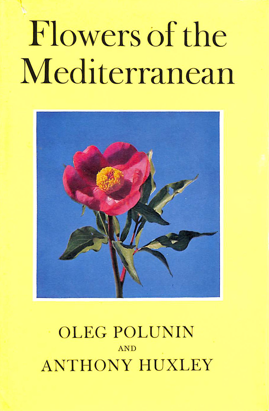 Image for Flowers Of The Mediterranean