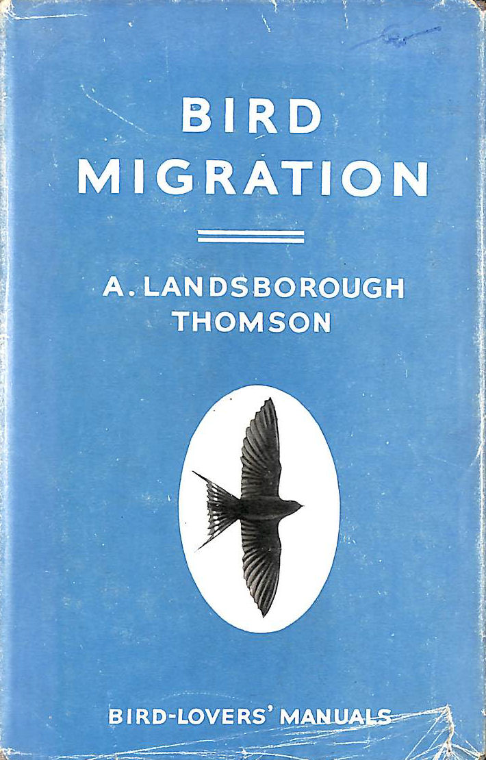 Image for Bird Migration