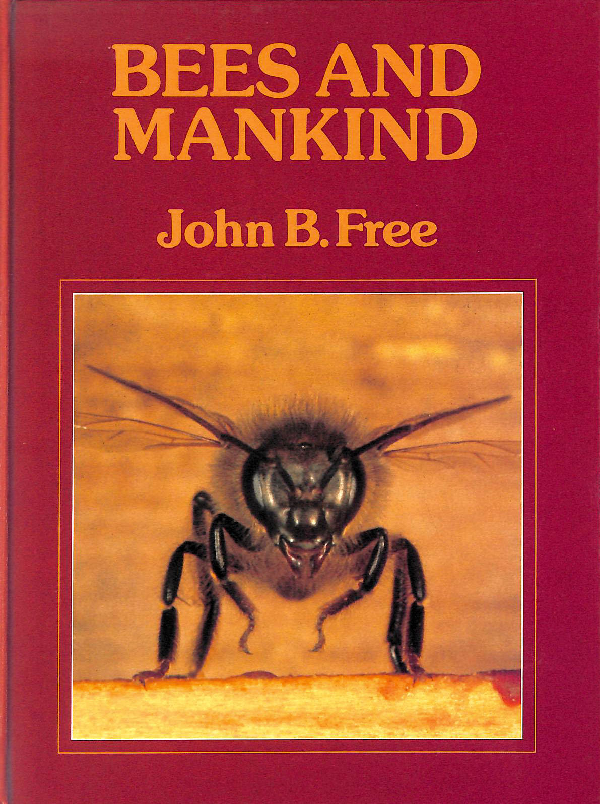 Image for Bees And Mankind