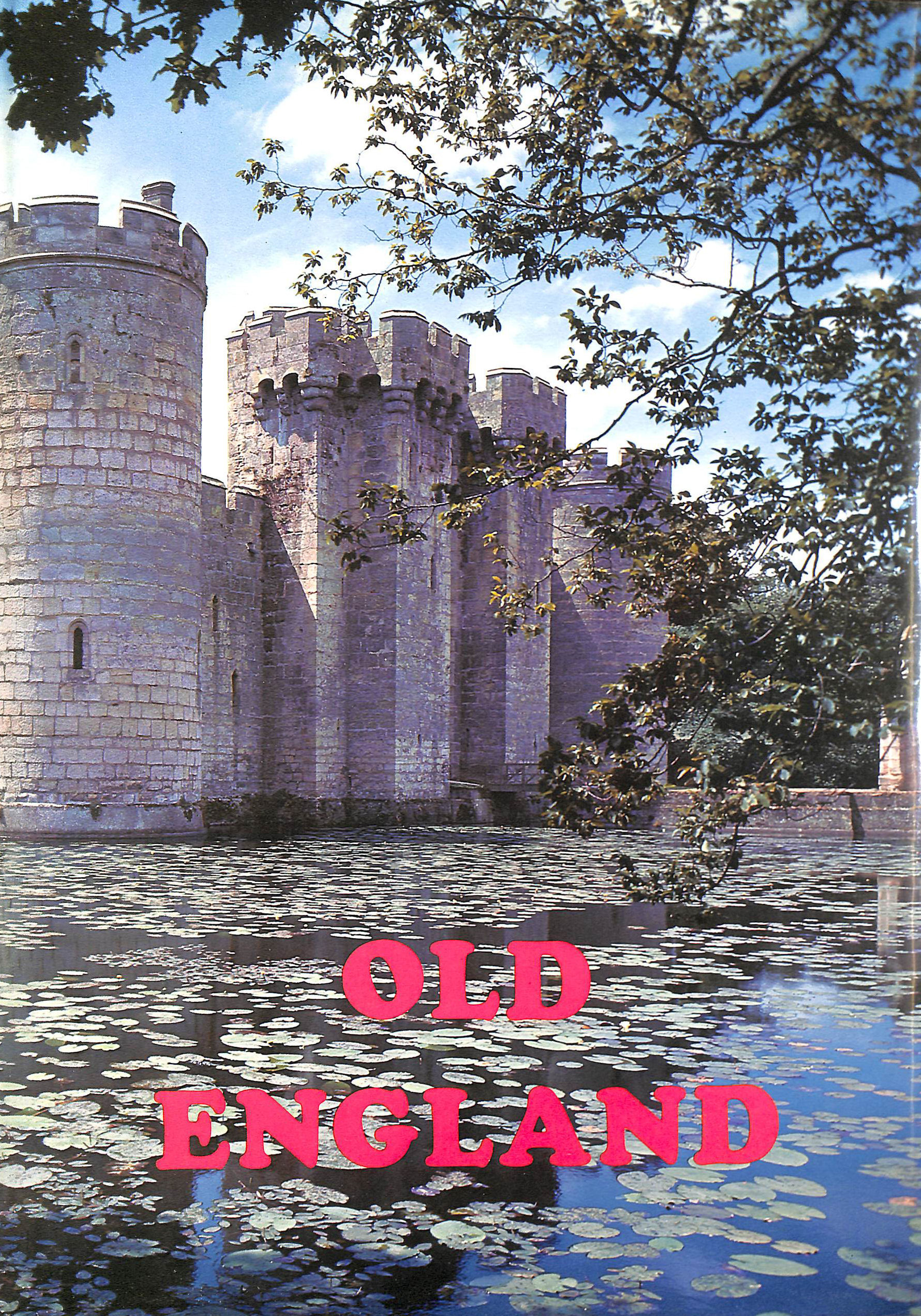 Image for Old England Pictorial Museum Of Regal, Ecclesiastical, Baronial, Municipal, And Popular Antiquities. Volumes I And Ii.