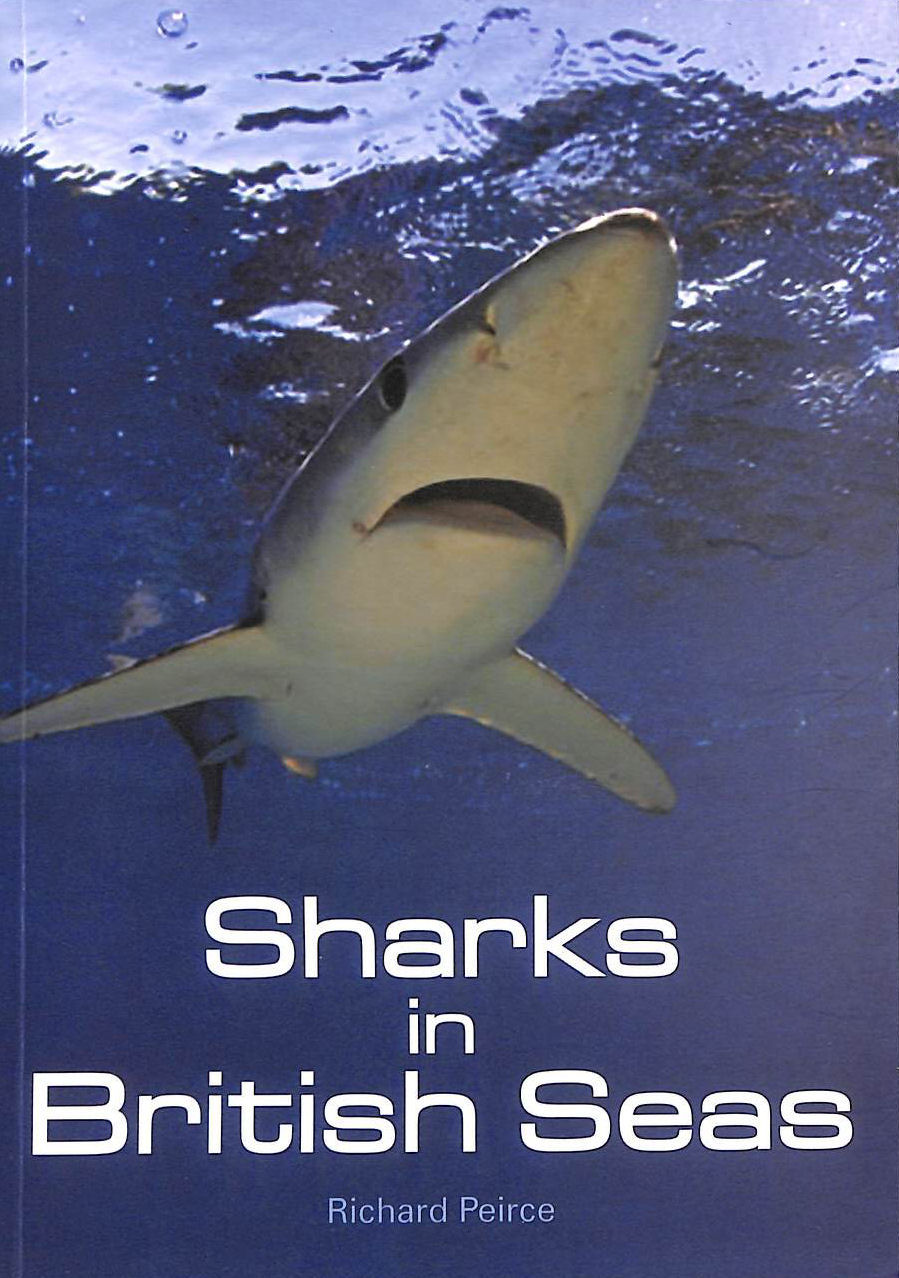 Image for Sharks in British Seas