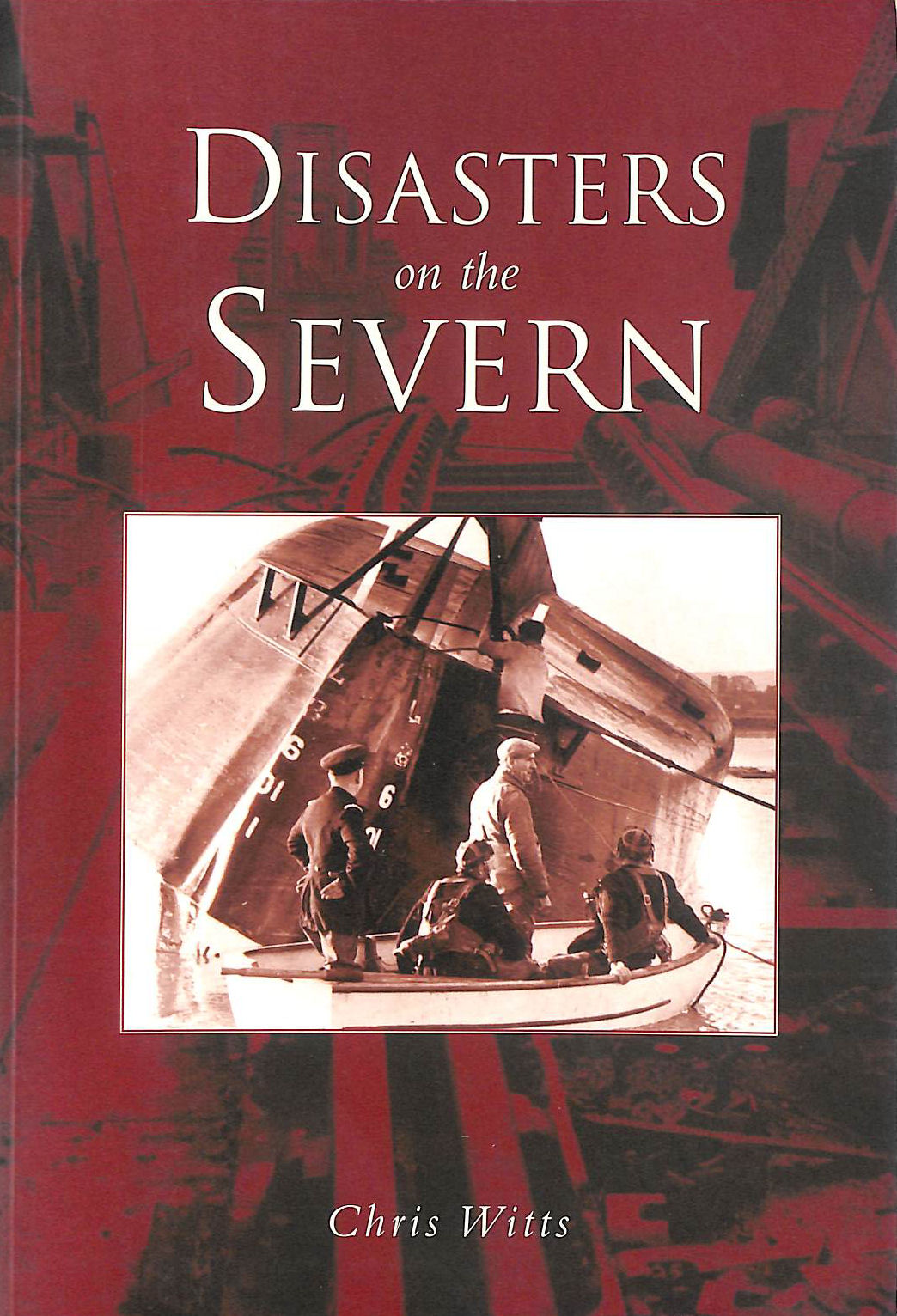 Image for Disasters on the Severn