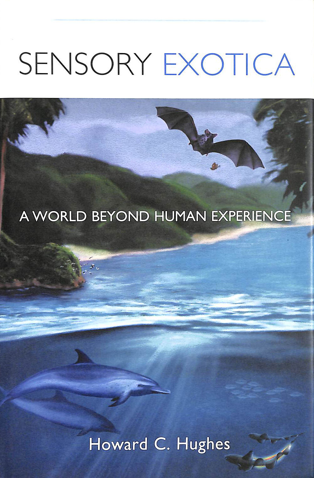 Image for Sensory Exotica: A World Beyond Human Experience (A Bradford book)