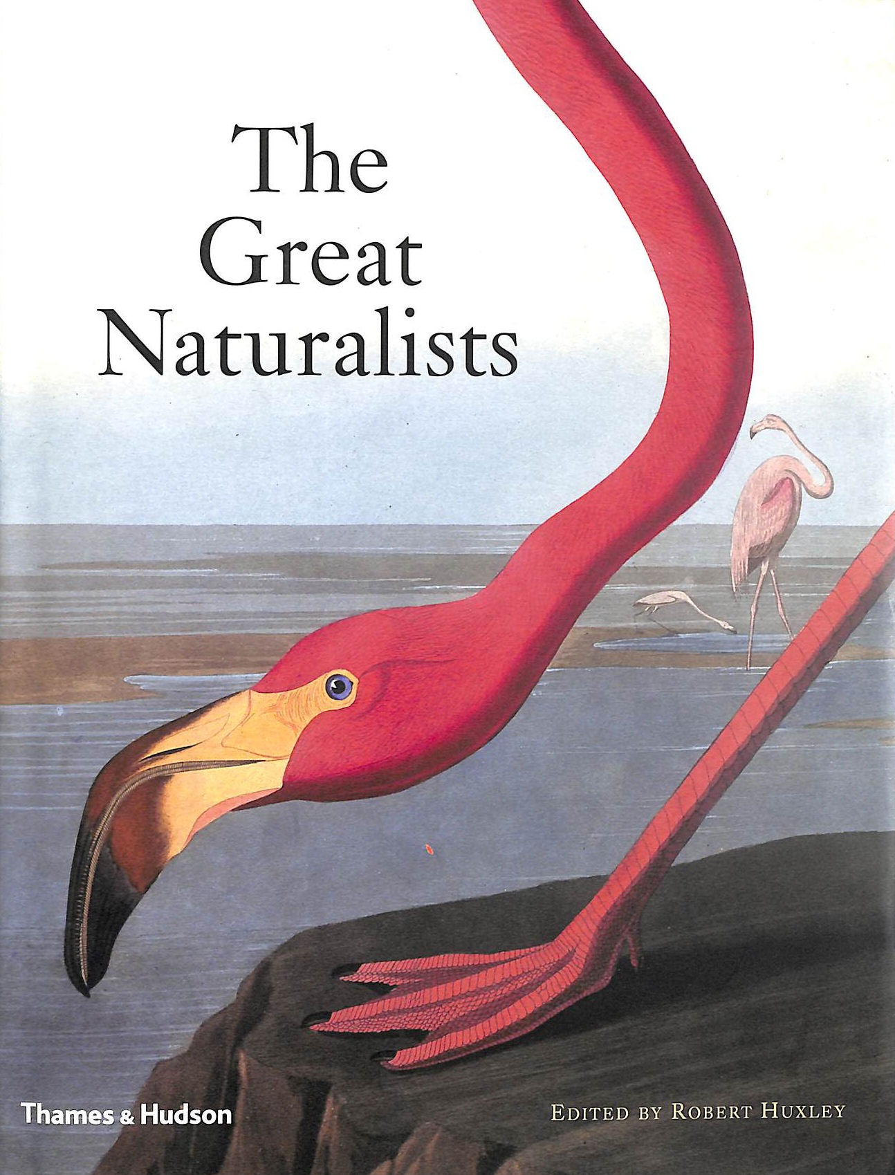 Image for The Great Naturalists: From Aristotle to Darwin
