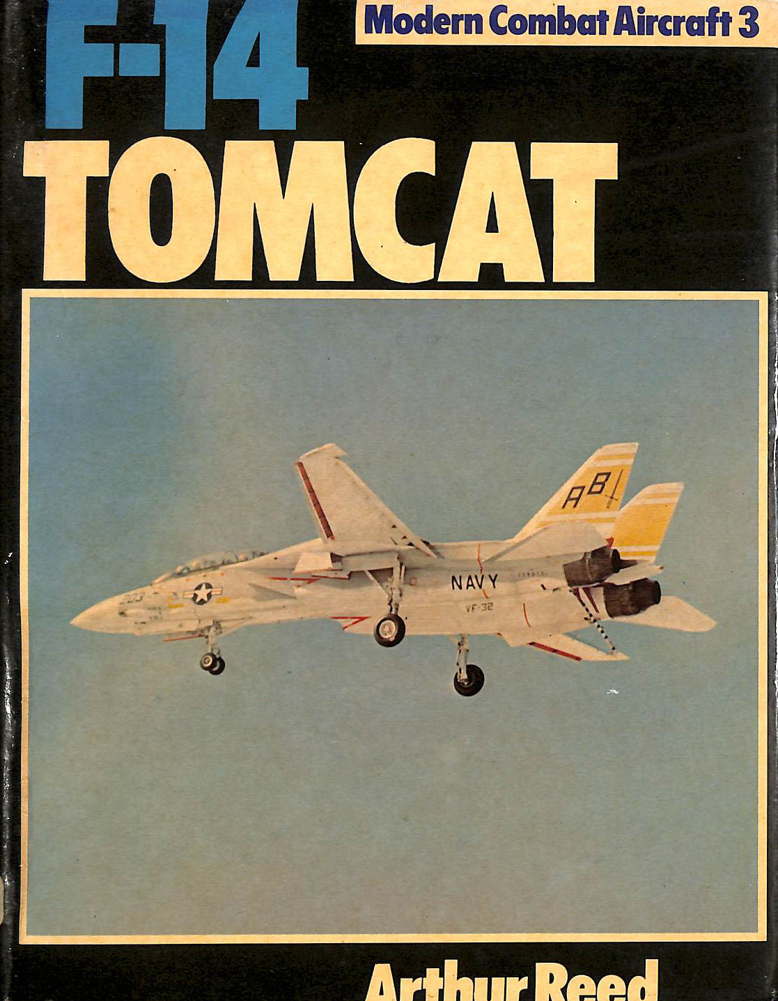 Image for F-14 Tomcat (Modern combat aircraft)