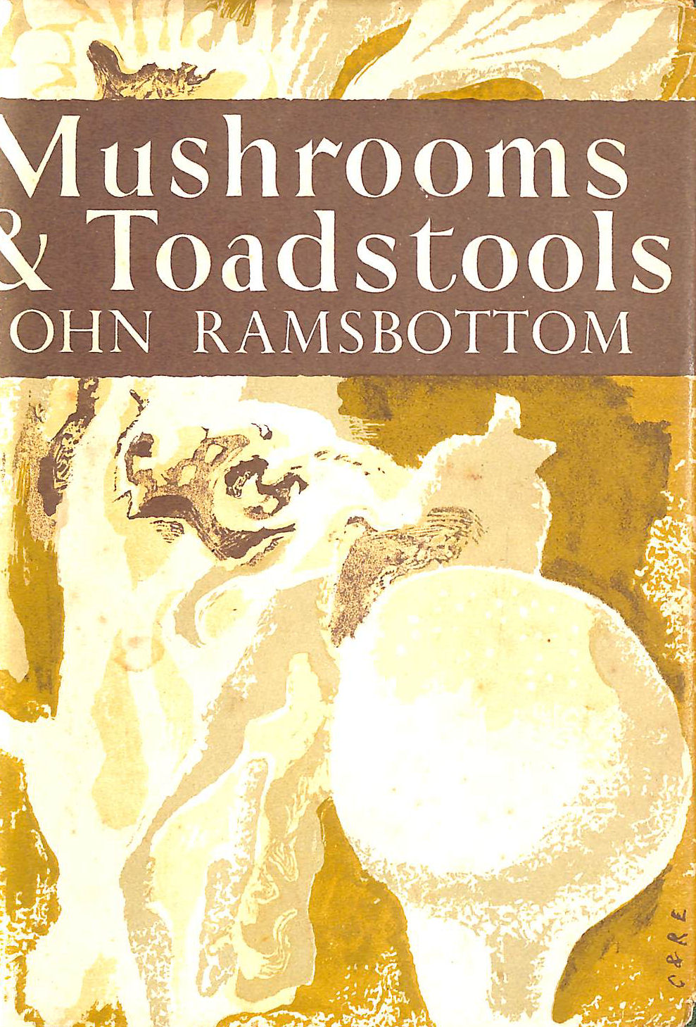 Image for Mushrooms and Toadstools (Collins New Naturalist Series)
