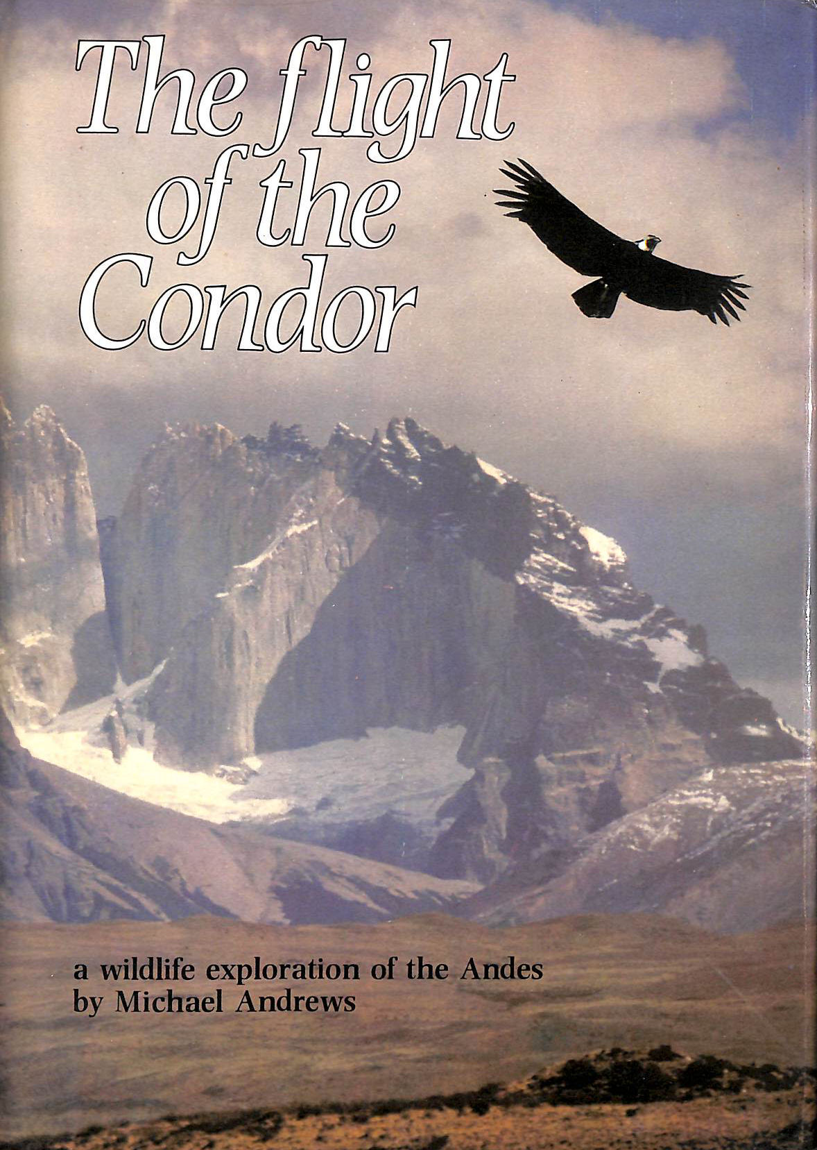 Image for The Flight of the Condor