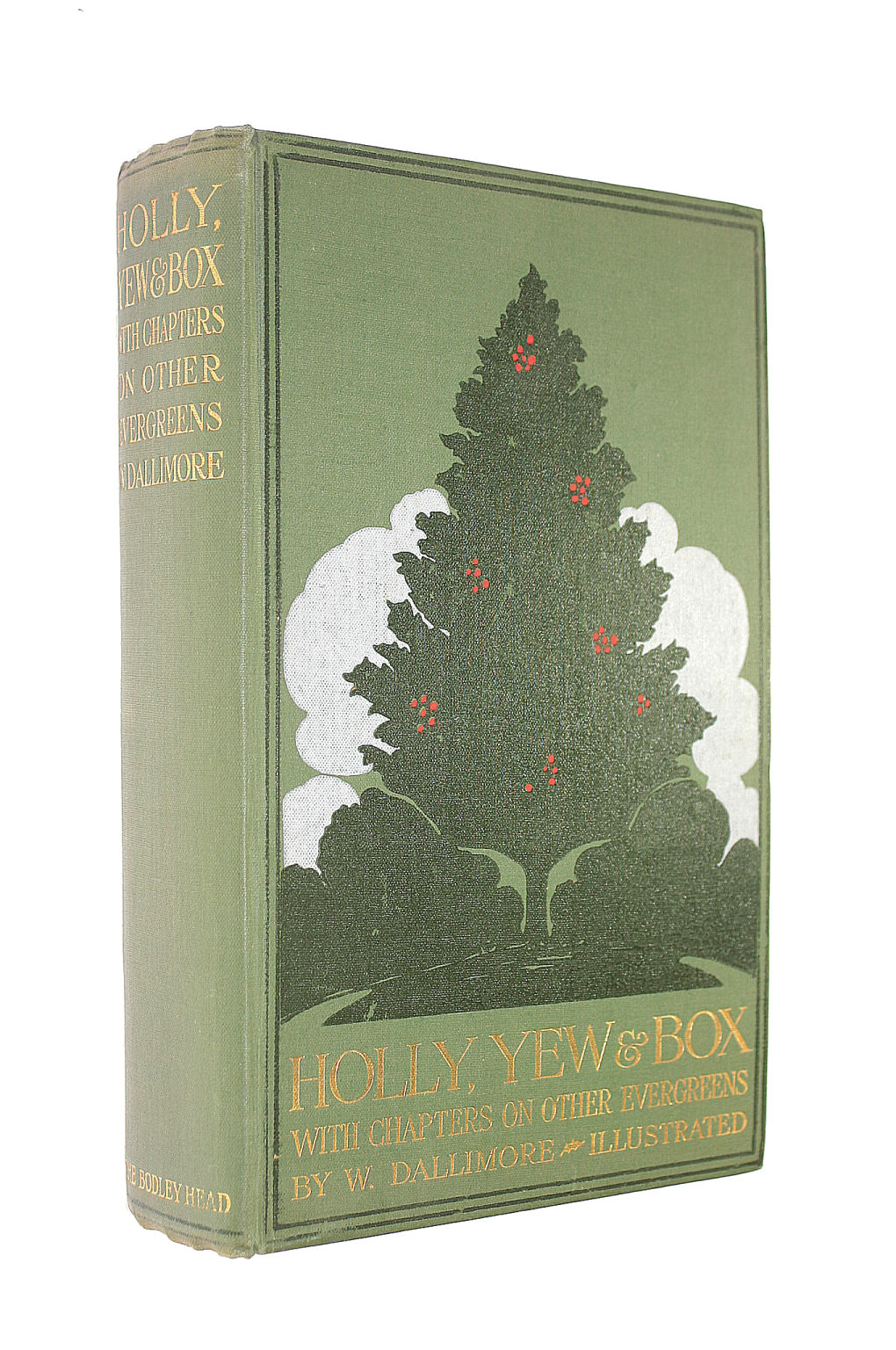 Image for Holly, yew & box,: With notes on other evergreens,