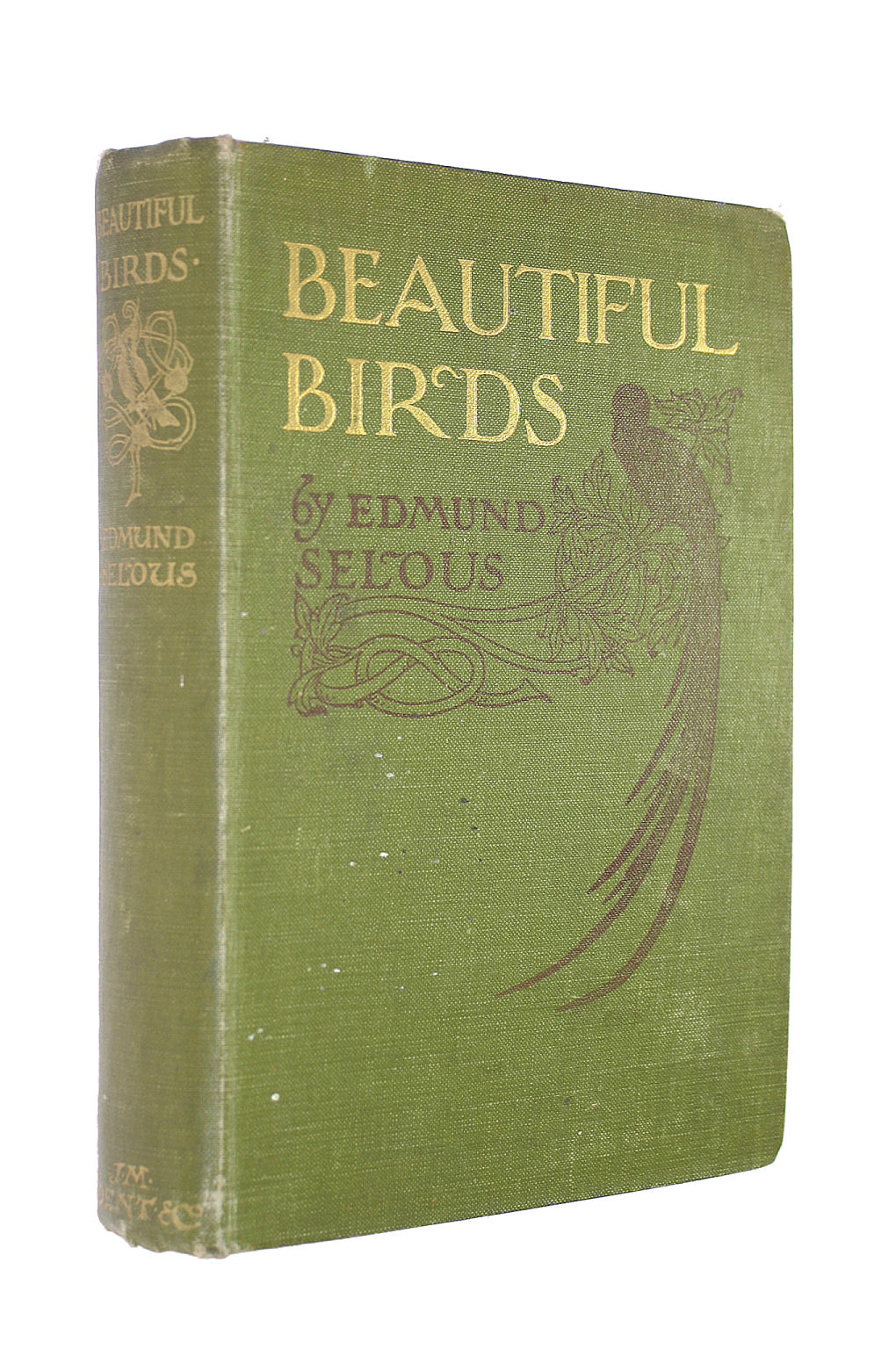 Image for Beautiful Birds ... With many illustrations, etc