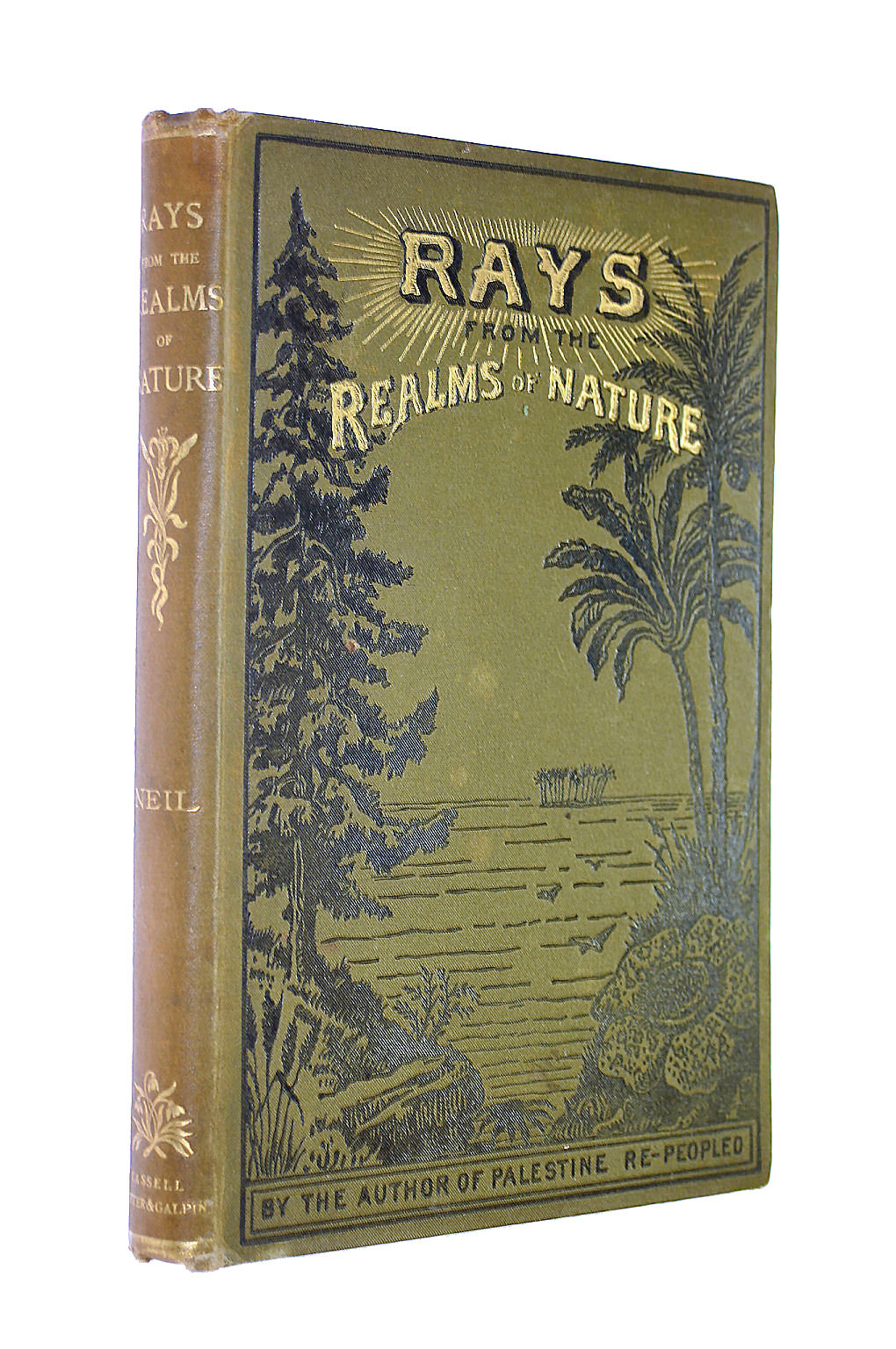 Image for Rays from the Realms of Nature; or Parables of Plant life