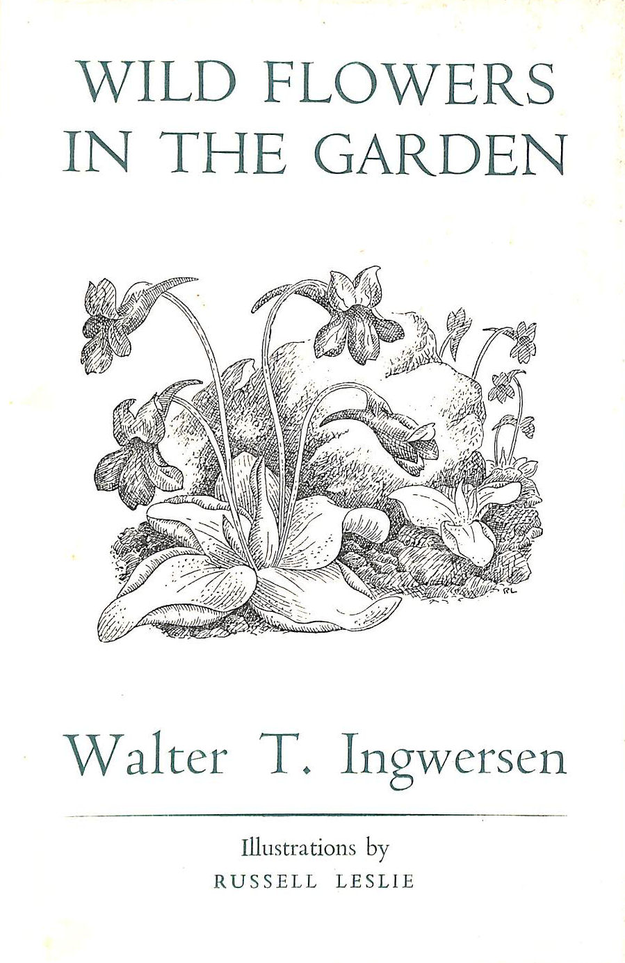 Image for Wild flowers in the garden
