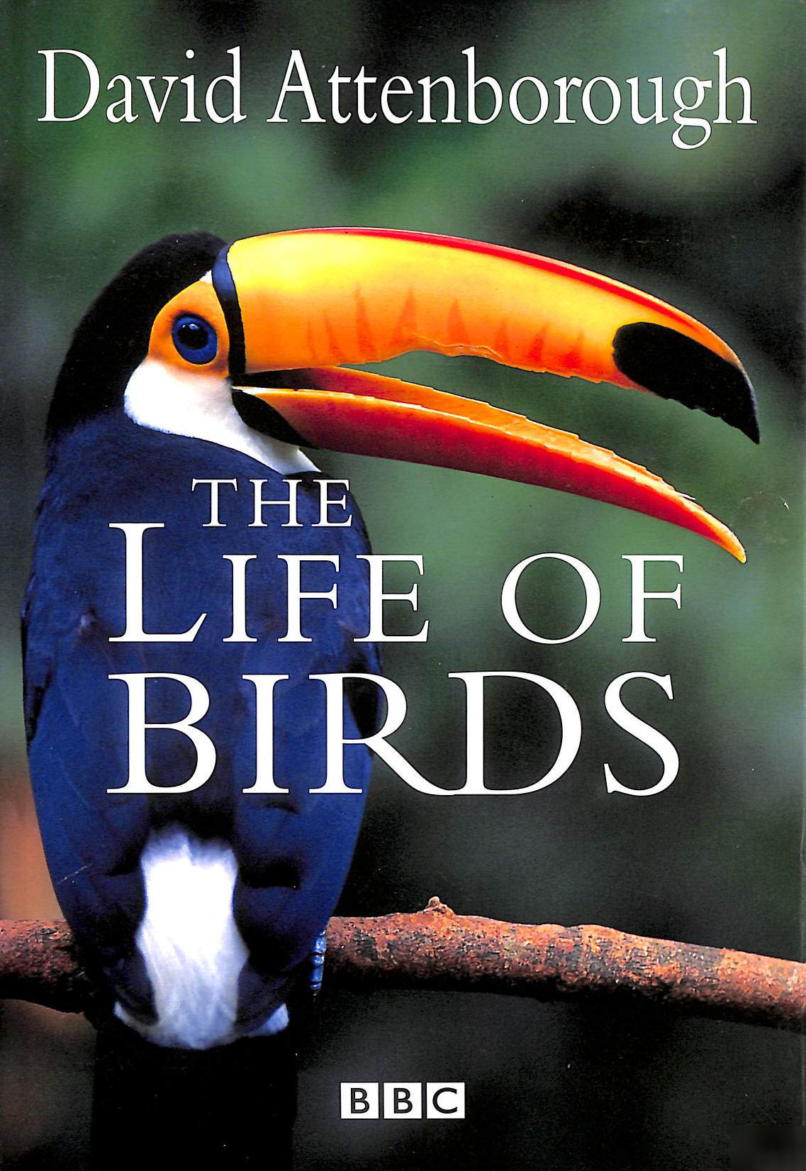 Image for The Life of Birds