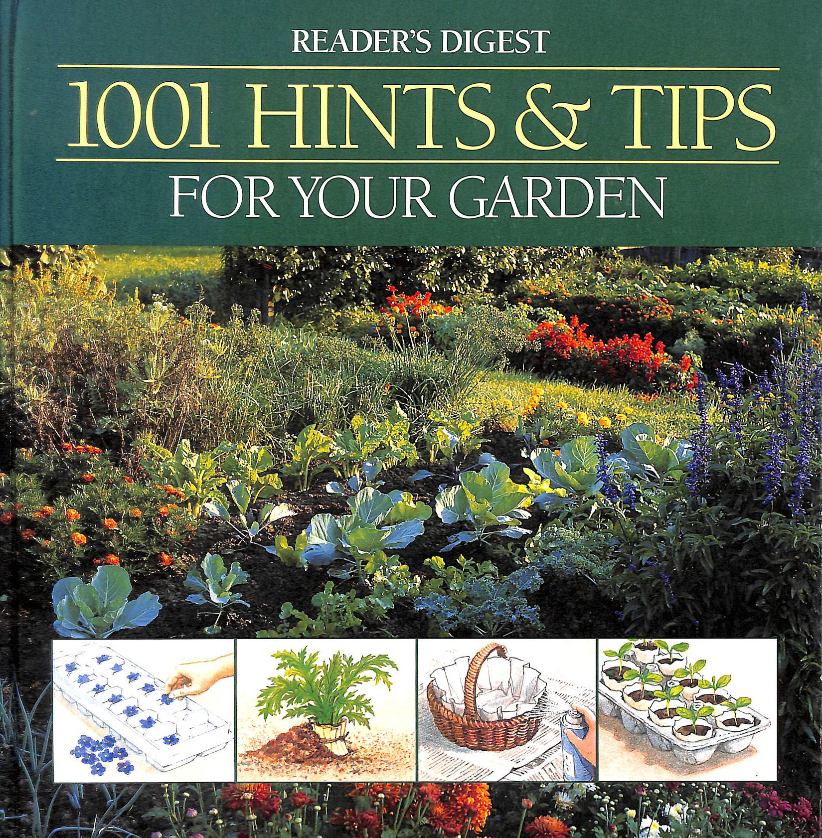 Image for 1001 Hints and Tips for Your Garden (Reader's Digest)