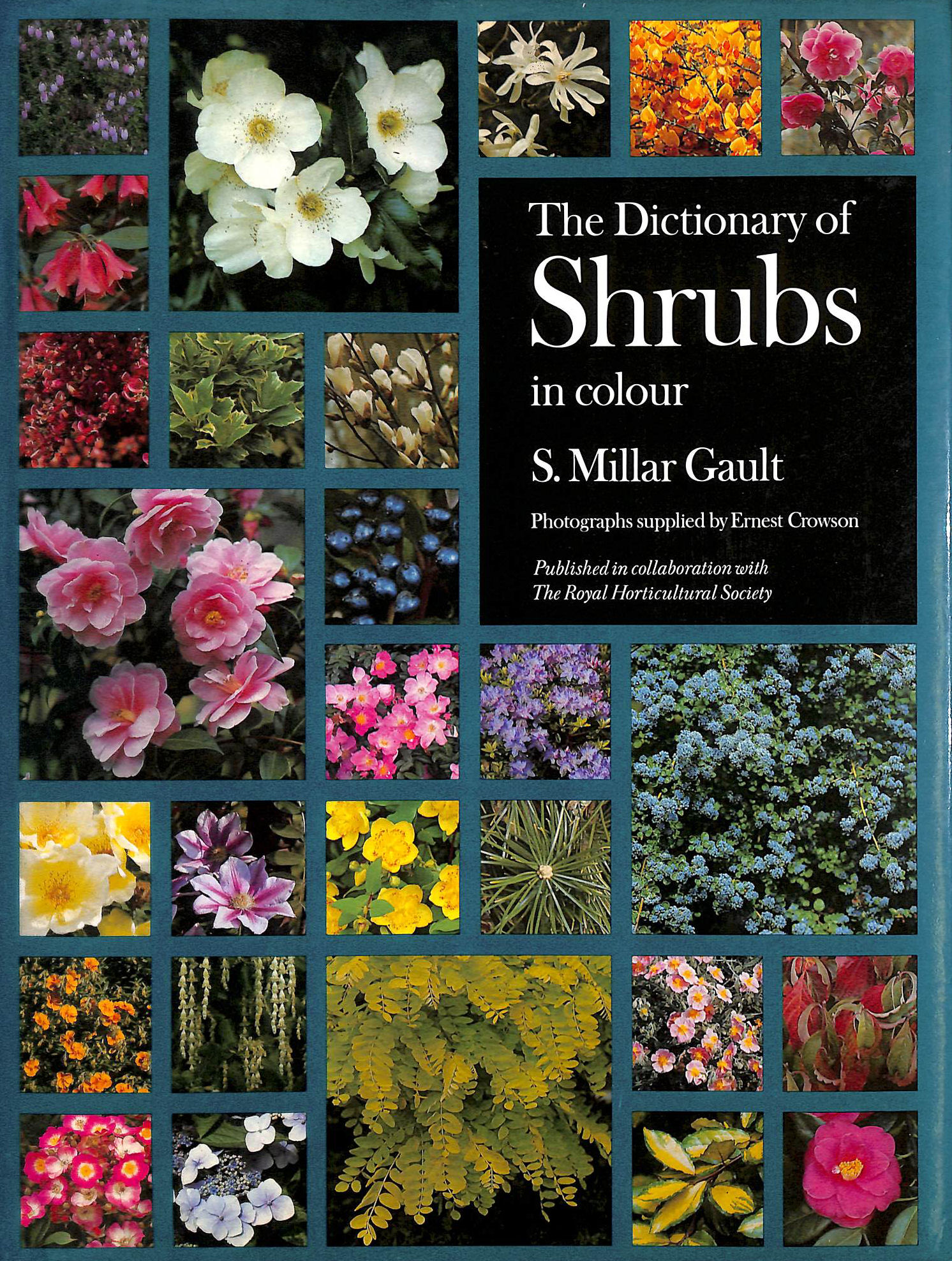 Image for Dictionary of Shrubs in Colour