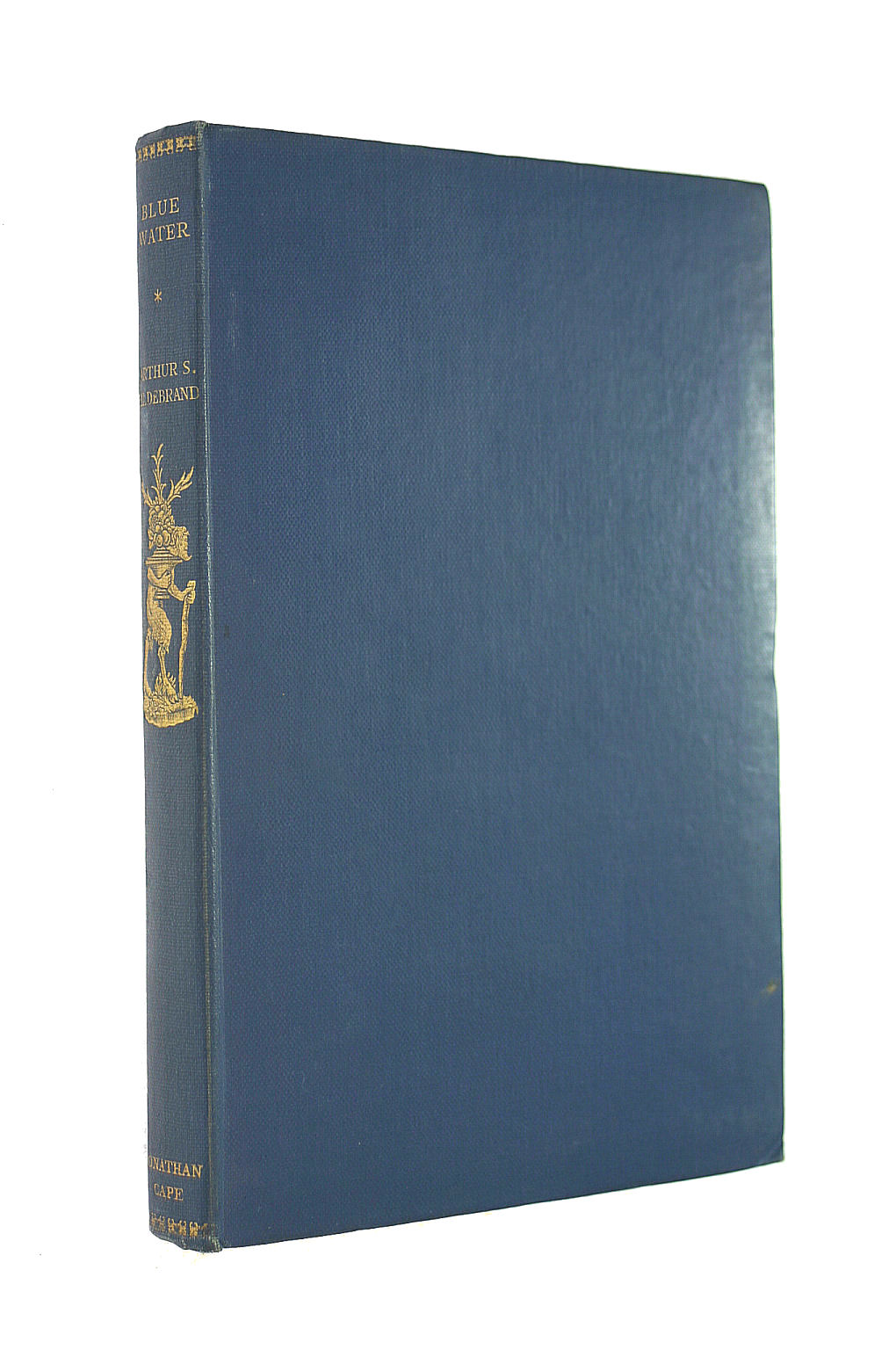 Image for Blue Water (Travellers' library)