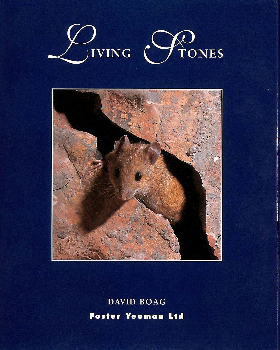 Image for Living Stones