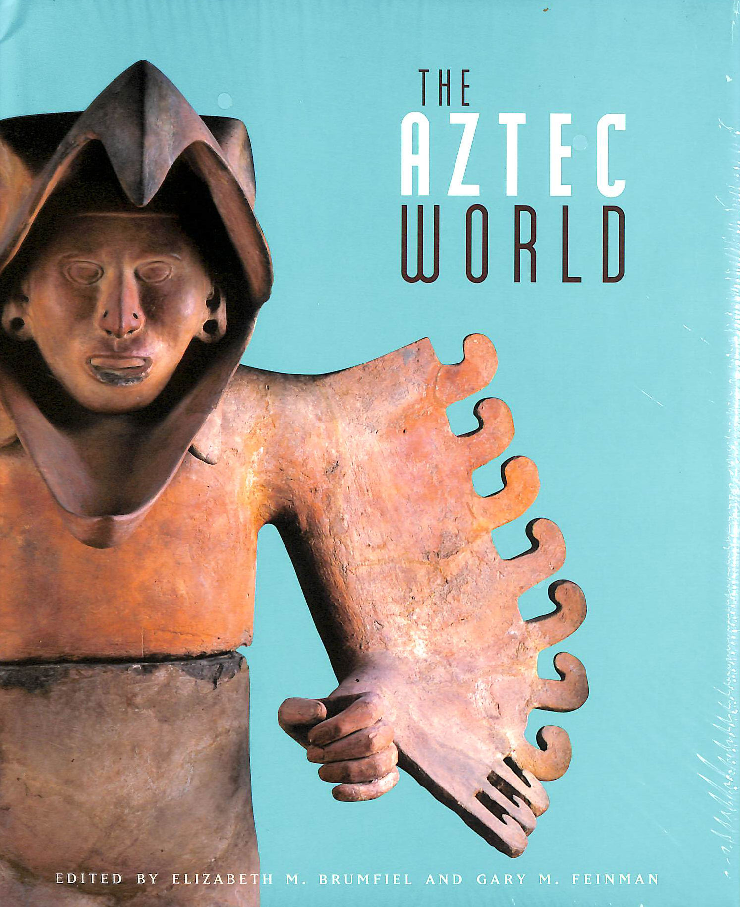 Image for The Aztec World