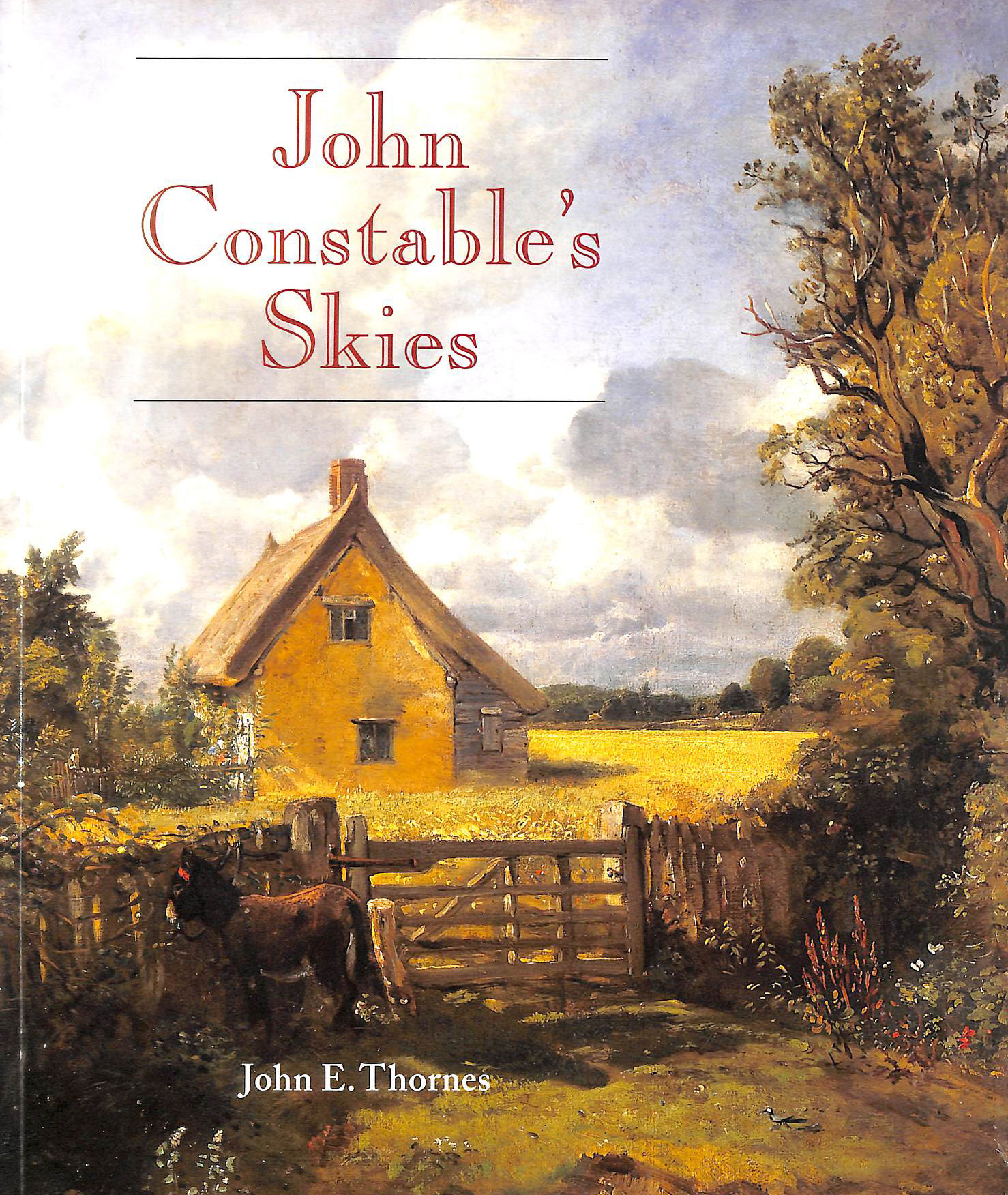 Image for John Constable's Skies: A Fusion of Art and Science