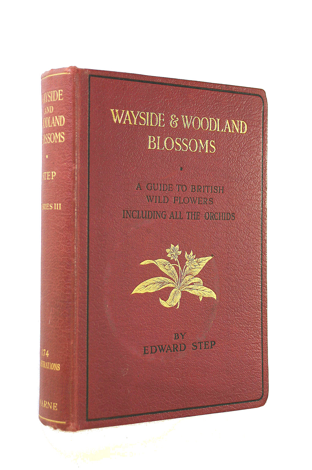 Image for Wayside & Woodland Blossoms; Third Series
