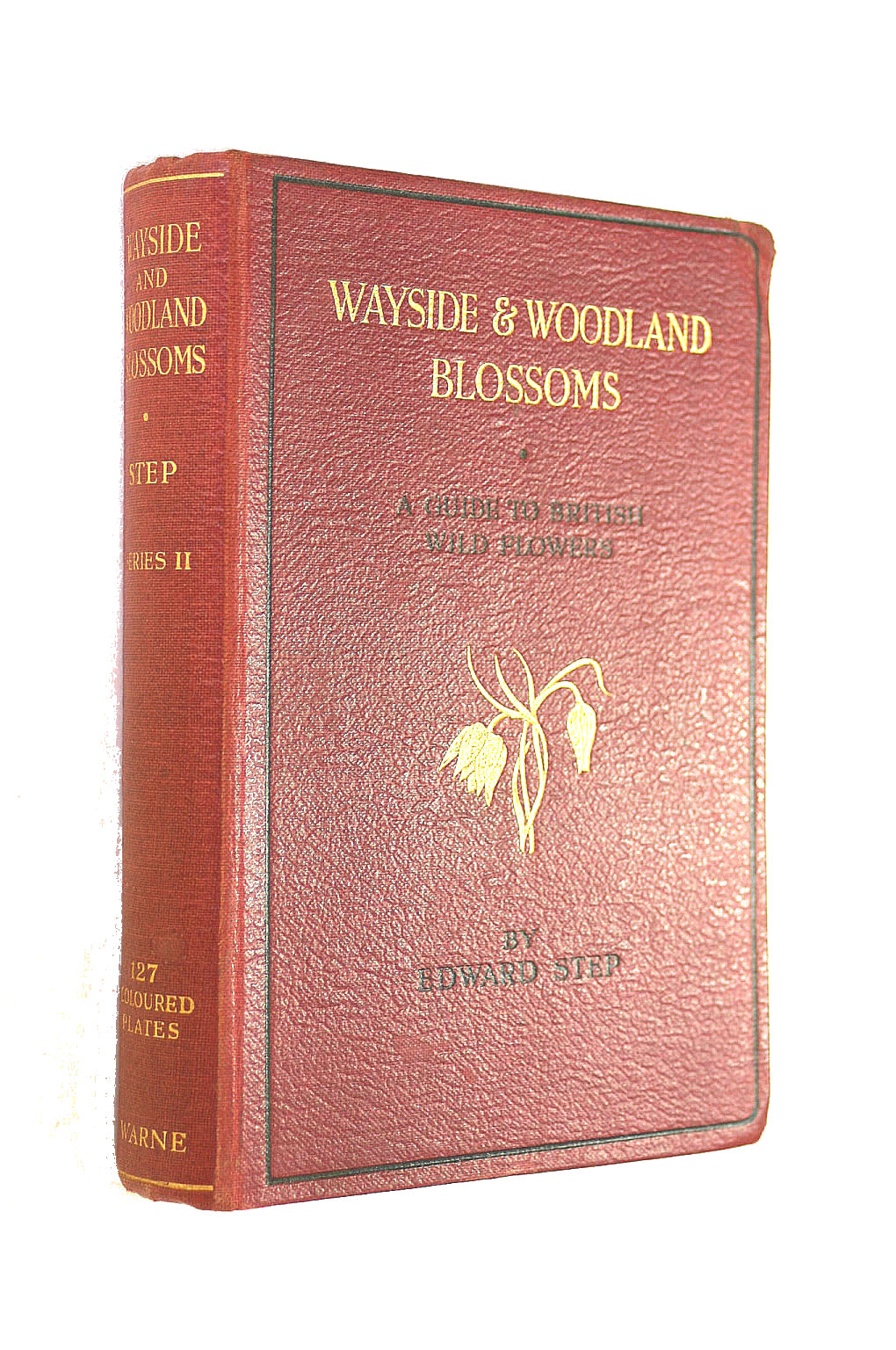 Image for Wayside & Woodland Blossoms; Second Series