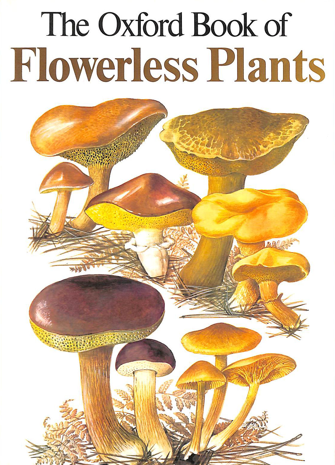 Image for The Illustrated Book of Flowerless Plants