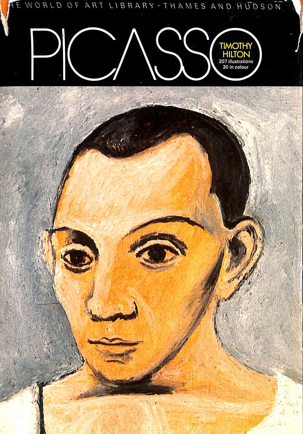 Image for Picasso (World of Art)