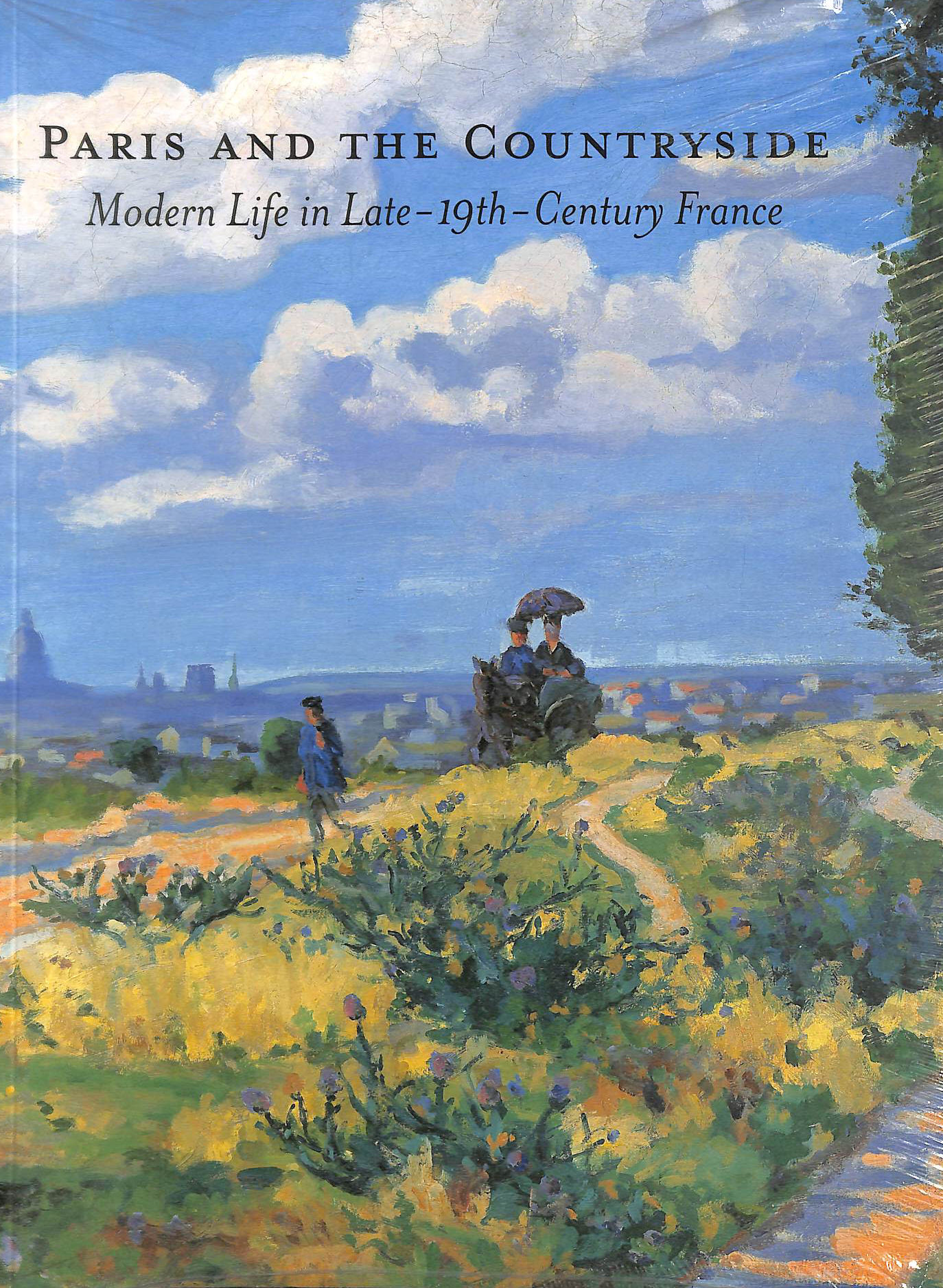 Image for Paris and the Countryside: Modern Life in Late 19th-century France