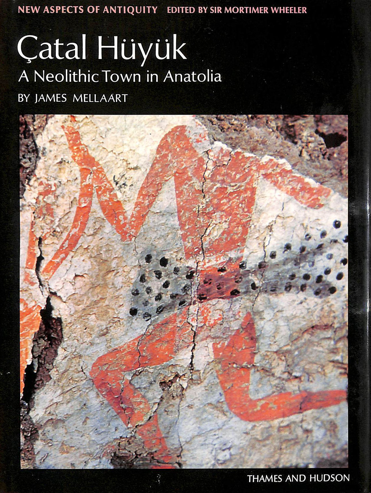 Image for Catal Huyuk: Neolithic Town in Anatolia (New Aspects of Antiquity)