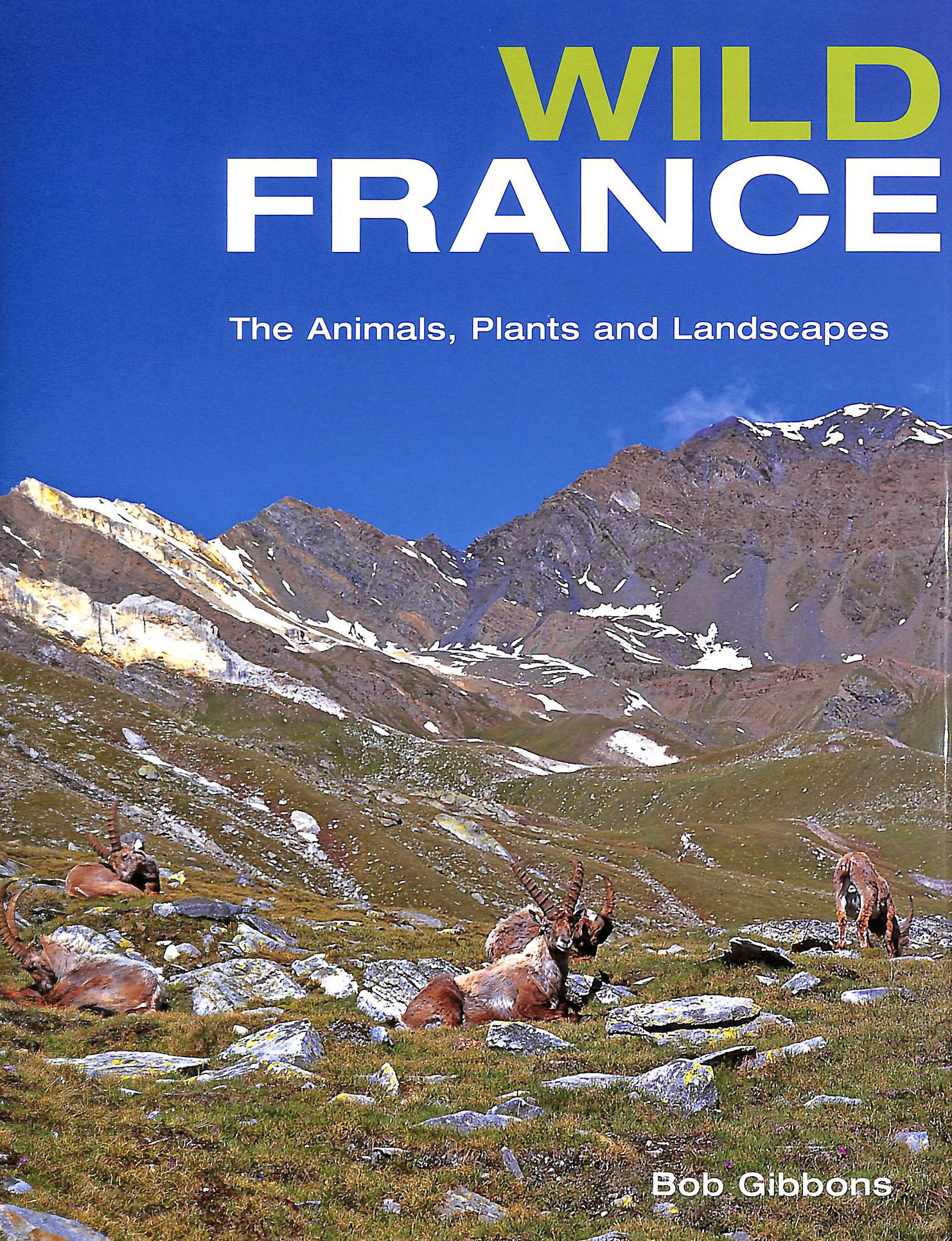 Image for Wild France: The Animals, Plants and Landscapes
