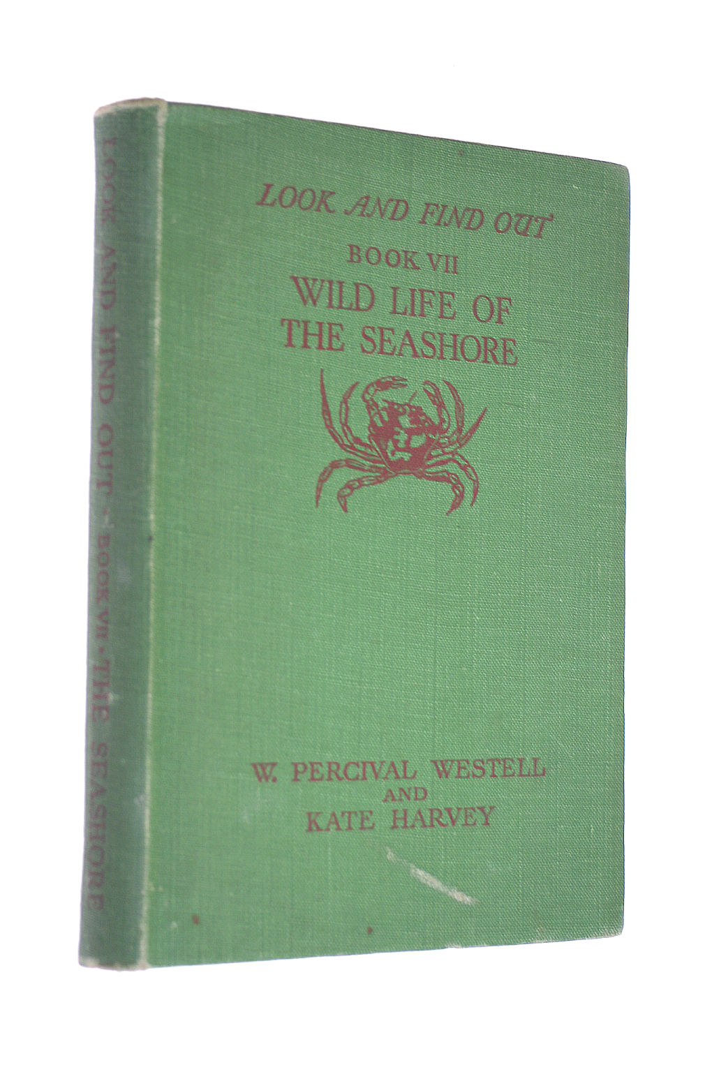 Image for The Wild Life Of The Seashore (Look And Find Out Series)- Book Vii